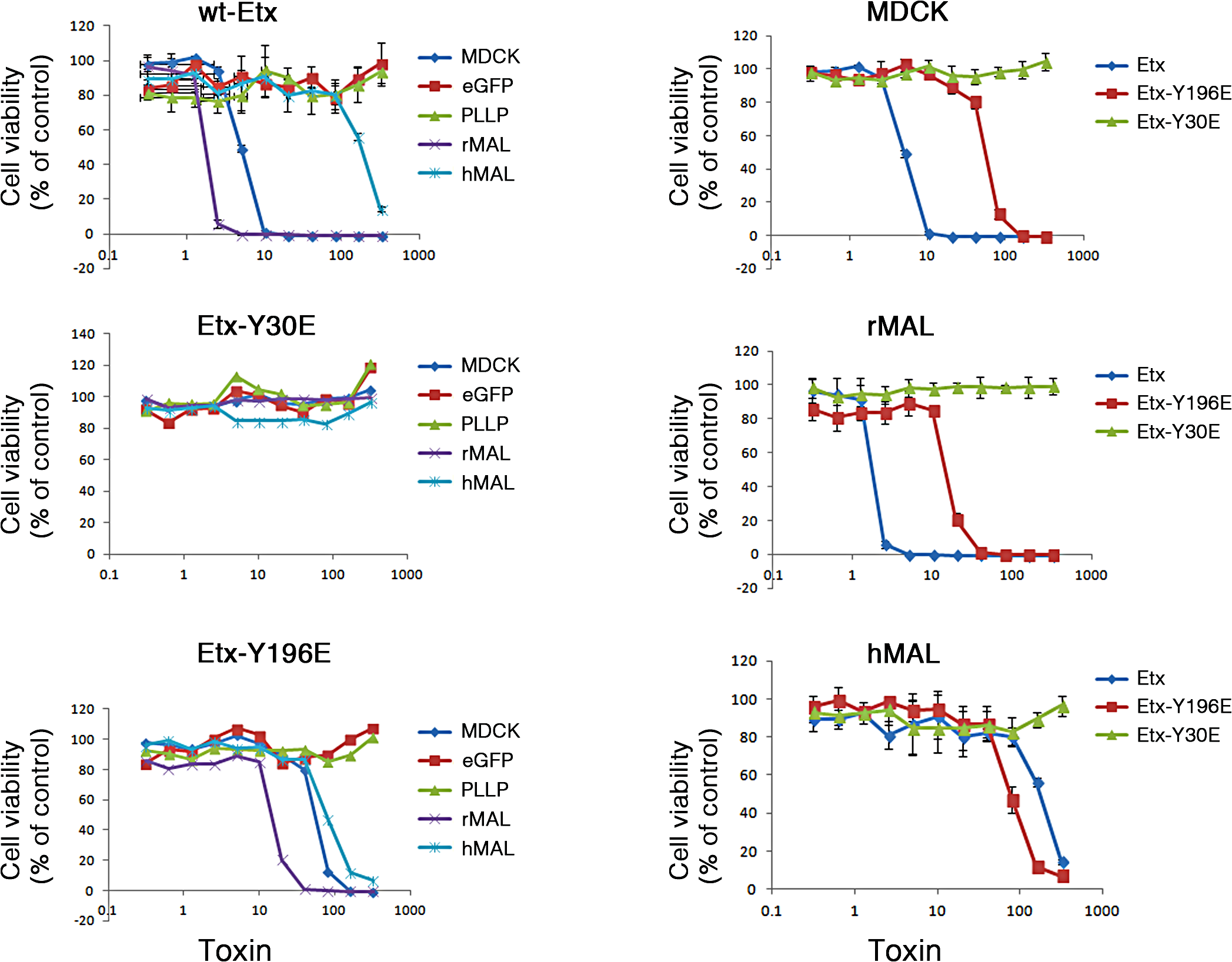 Specific aromatic residues within domain 1 of ETX are required for toxin activity in MAL-expressing CHO cells.