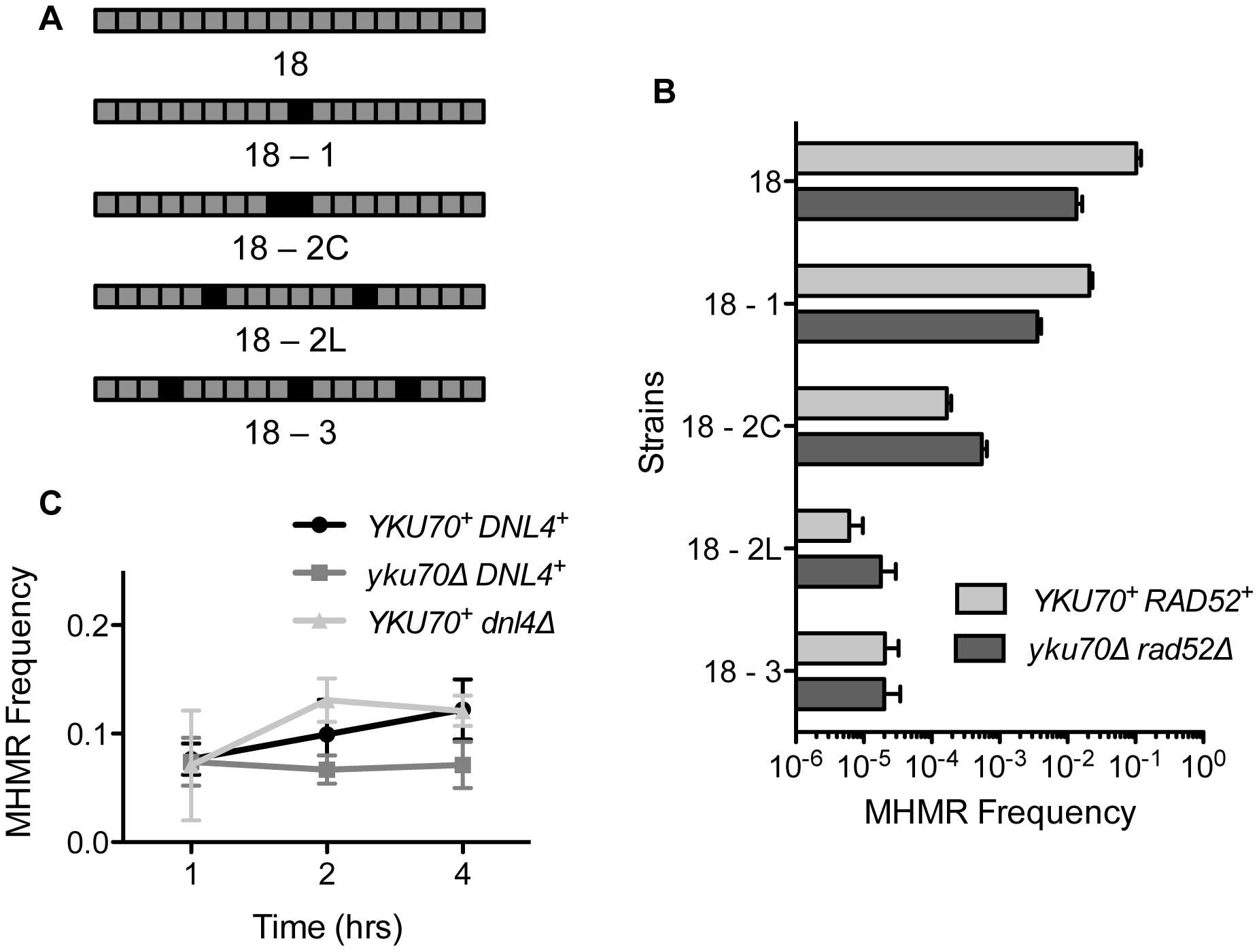 Mismatched microhomology inhibits repair efficiency, but NHEJ does not inhibit MHMR.