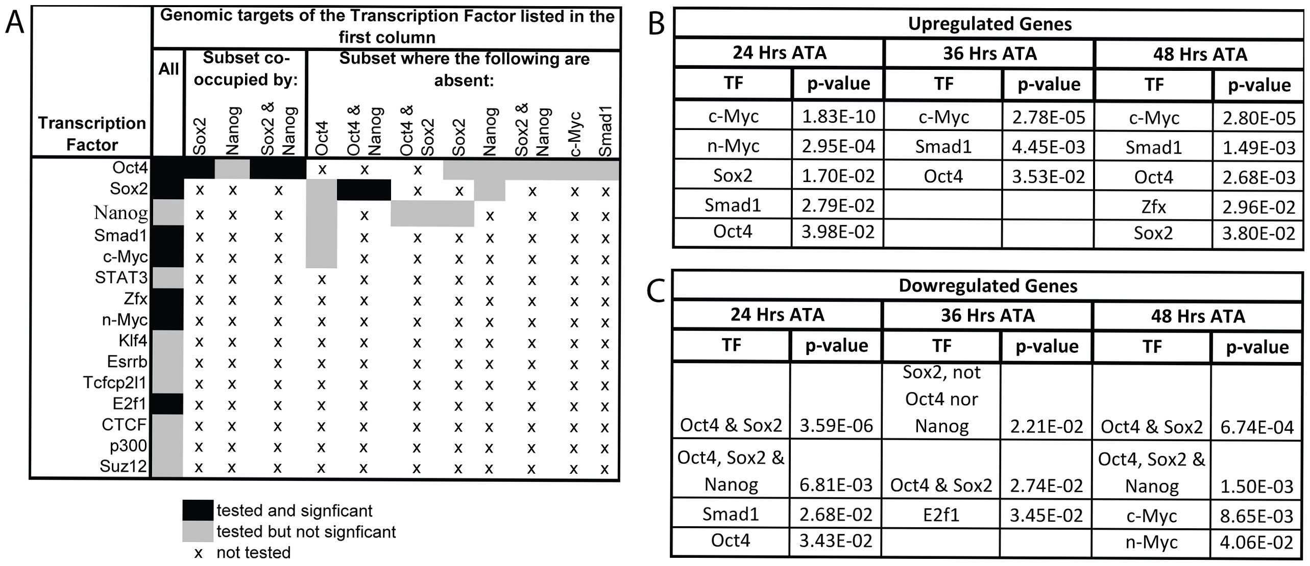 Gene expression profiling coincident with and following Oct4 depletion indicates that c-Myc, Smad1 and Oct4 targets are up-regulated while targets co-occupied by Oct4 and Sox2 are down-regulated.