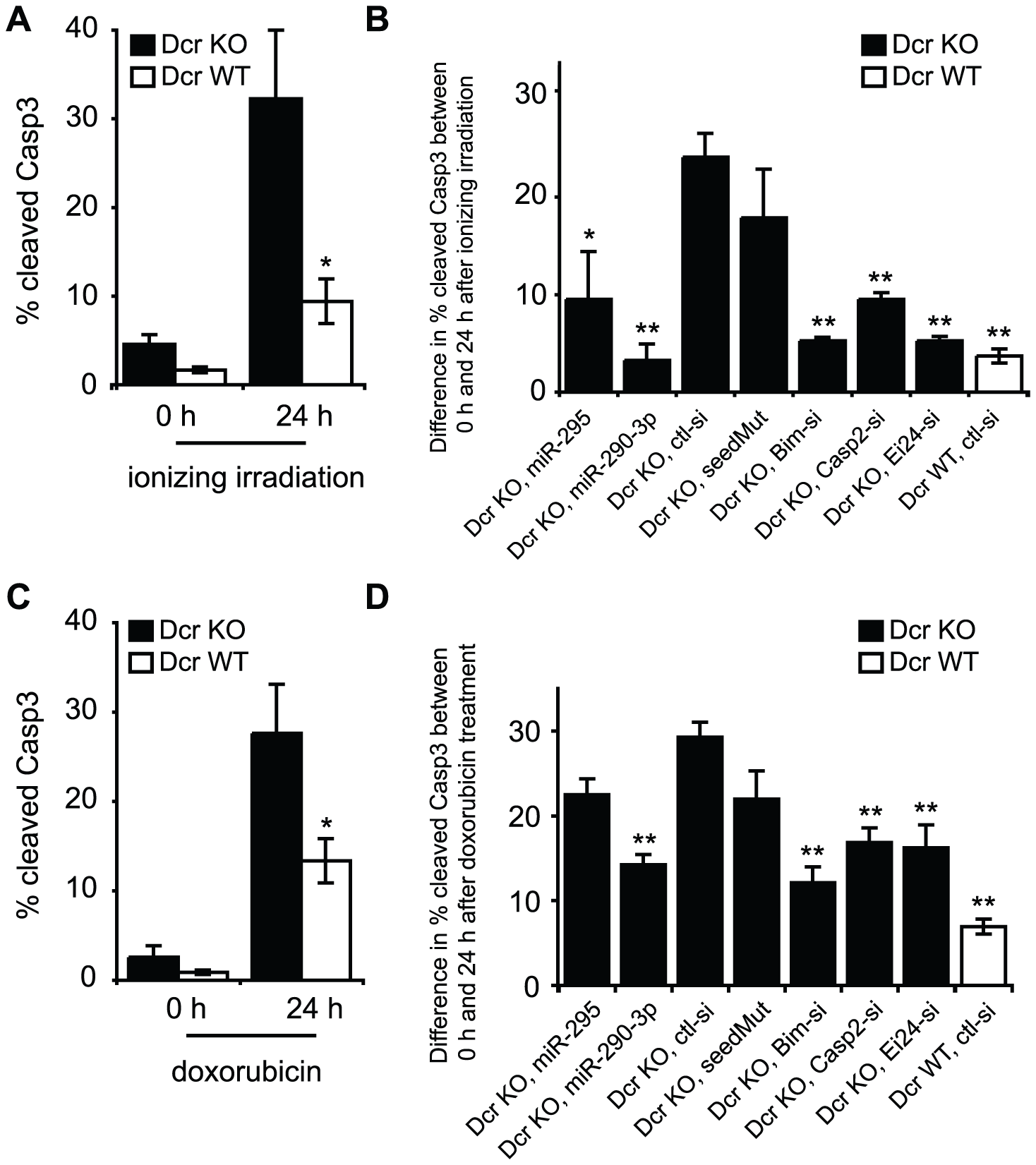 Downregulation of Casp2 and Ei24 partially rescues the increased apoptotic rate of Dcr KO cells following genotoxic stress.