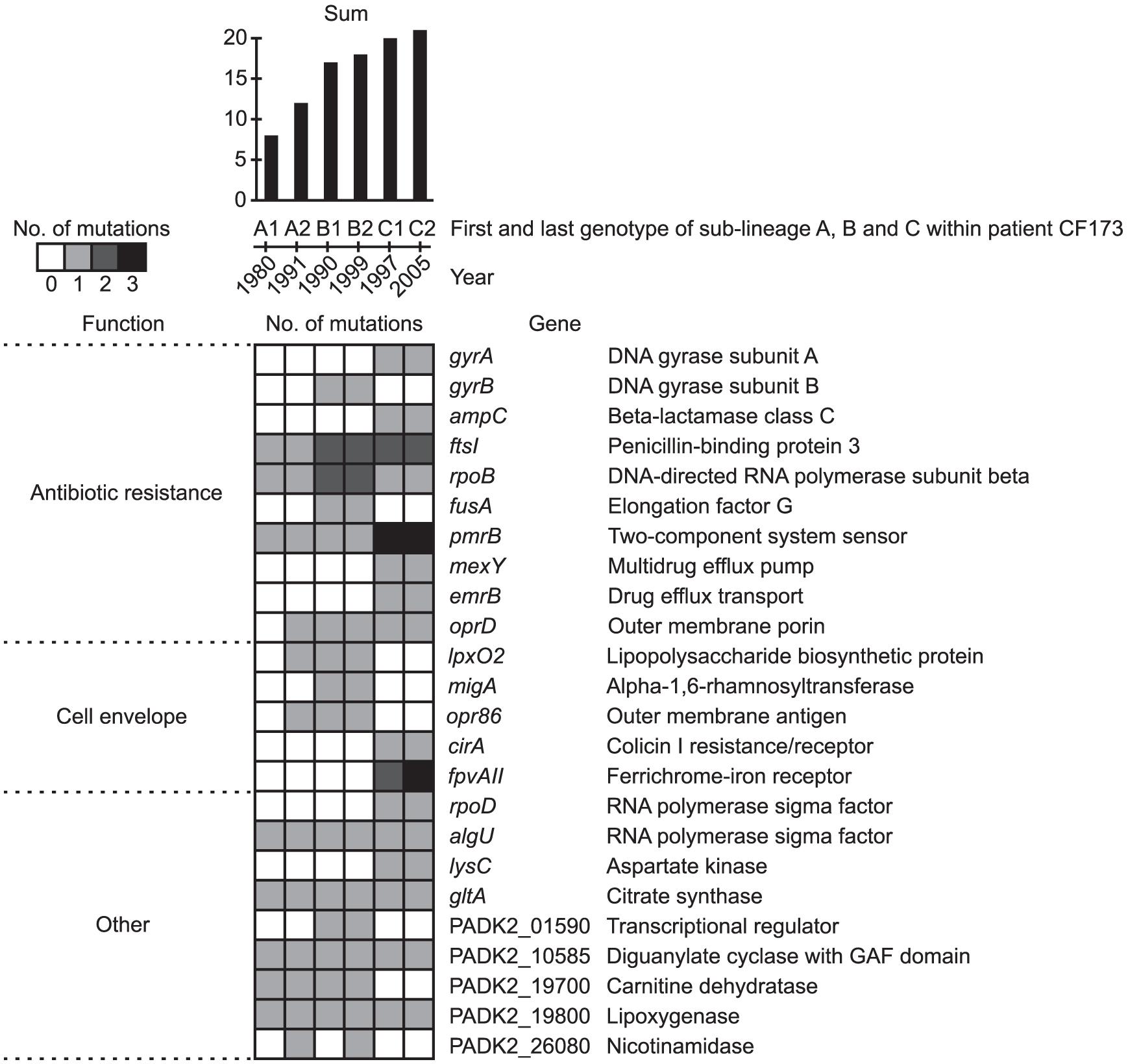 Pathoadaptive genes.