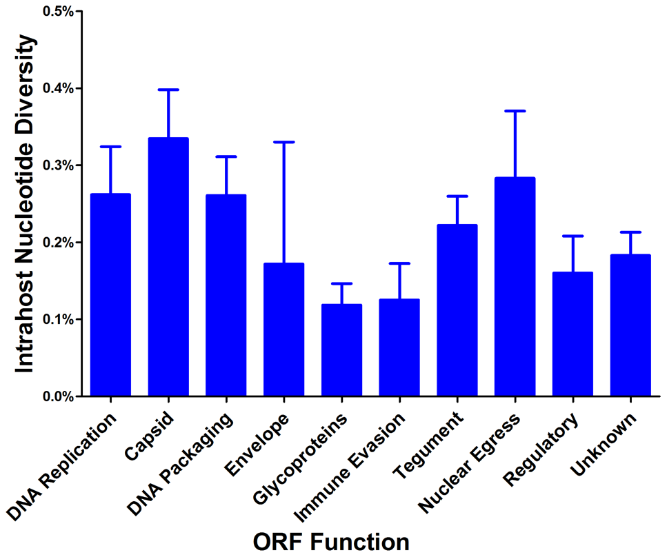 HCMV intrahost nucleotide diversity is significantly correlated with ORF function.