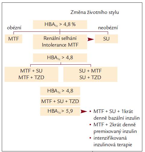 Schéma 3. IDF guideline pro DM2T.