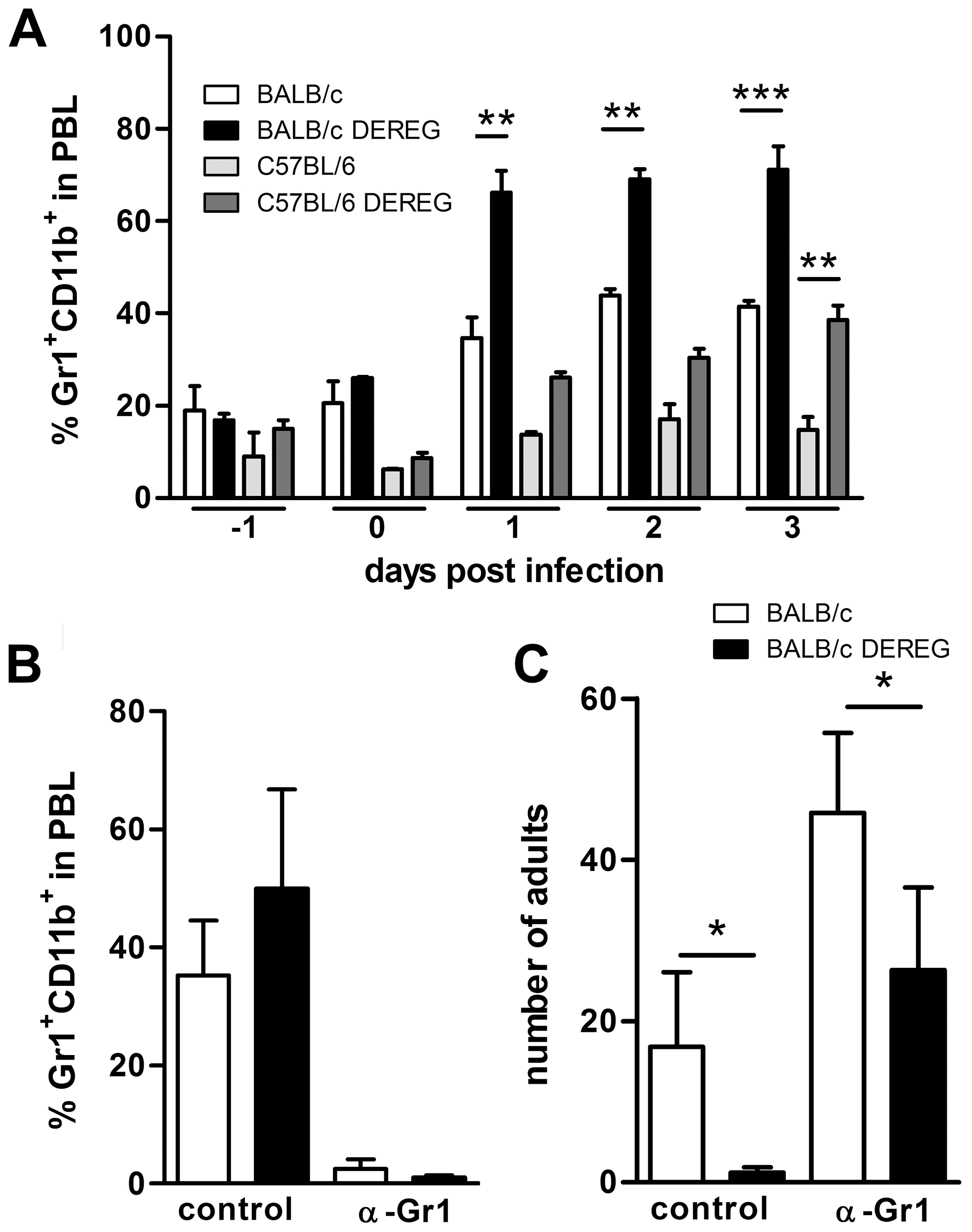 Improved resistance in Treg-depleted BALB/c DEREG mice in the absence of granulocytes.
