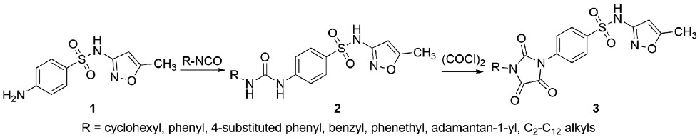 Synthesis of sulfamethoxazole derivatives 2 and 3