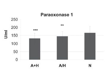 Fig. 2. Activity of Paraoxonase 1 according to the concentration of HDL-C and ApoA1