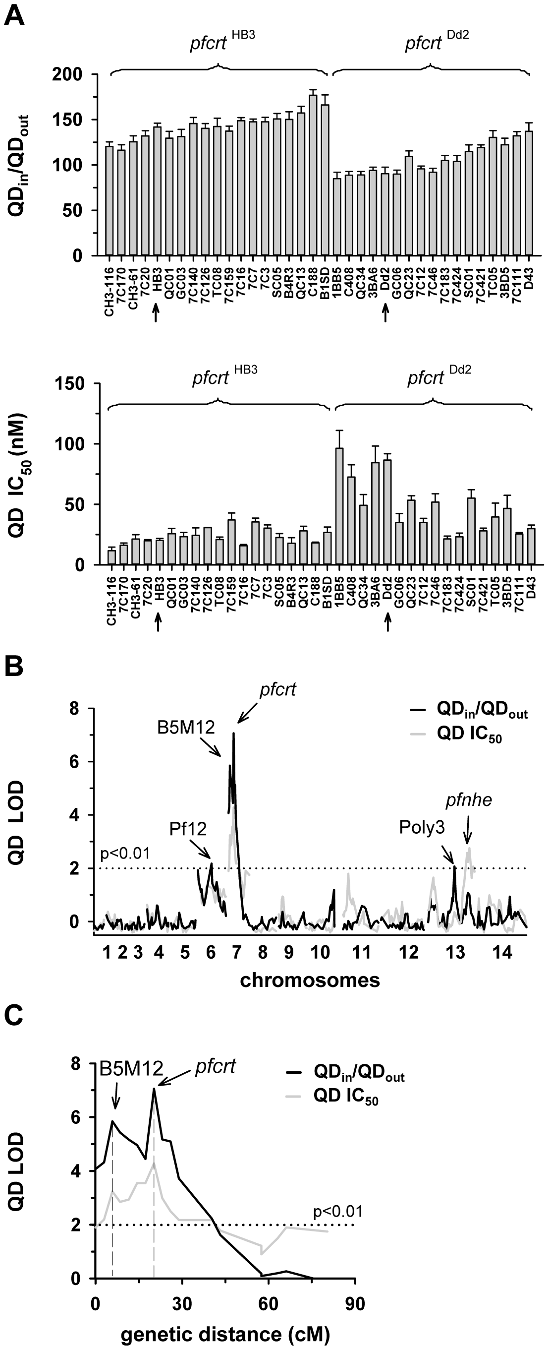 Linkage analyses on quinidine responses in the HB3 x Dd2 cross.
