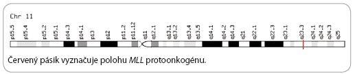 Chromozóm č. 11 [22].