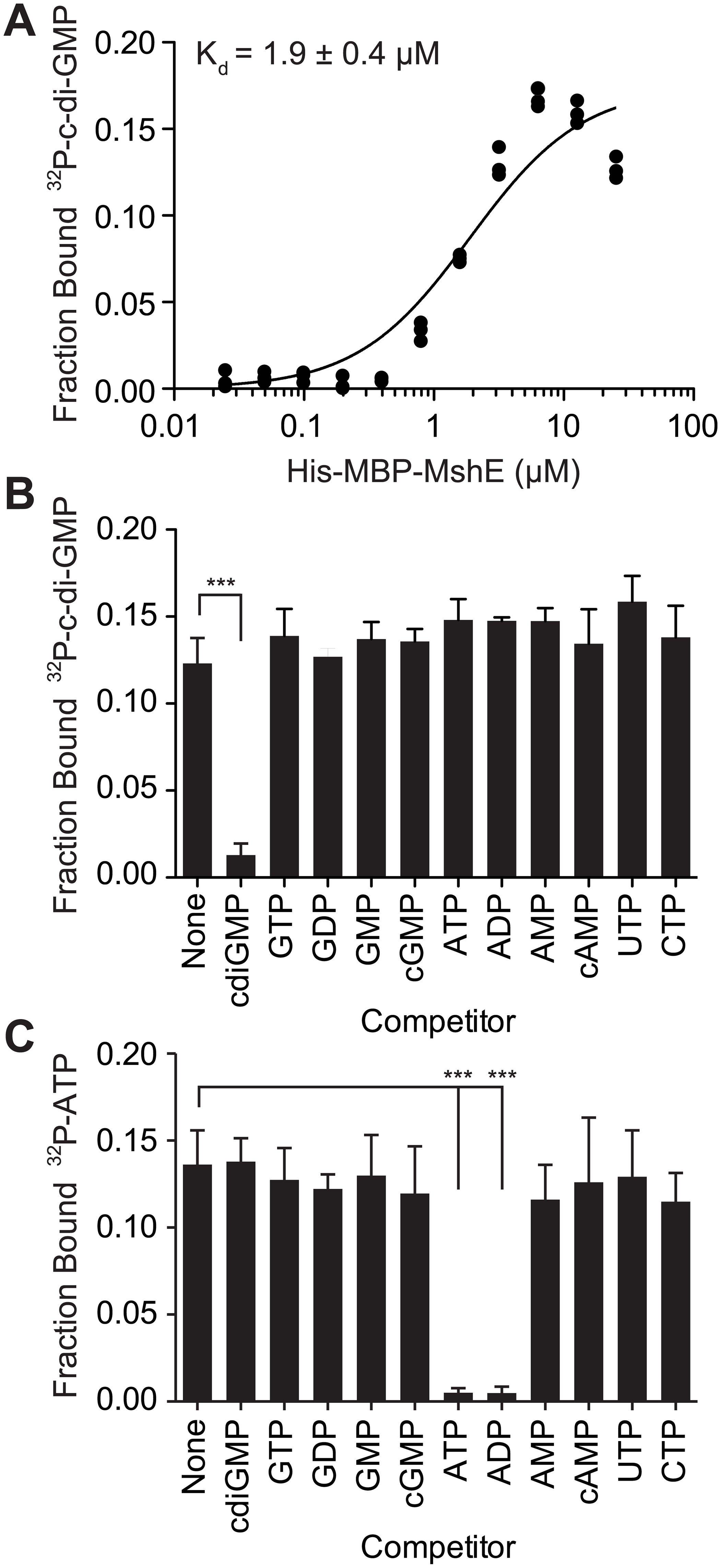 C-di-GMP bind to MshE ATPase with high affinity, specificity and independently of ATP.