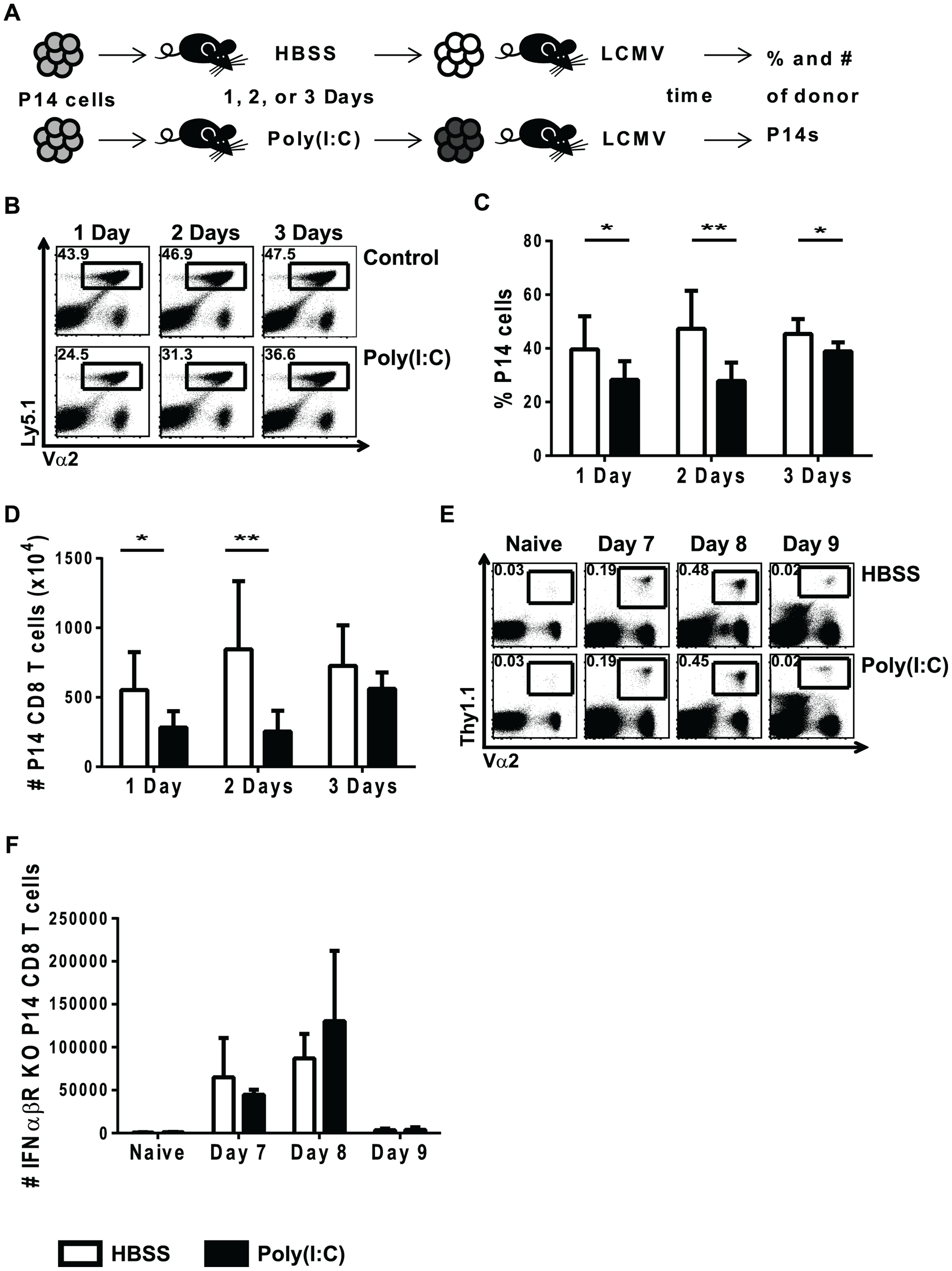 Poly(I∶C)-induced impaired proliferation is transient and requires direct effects of type 1 IFN.