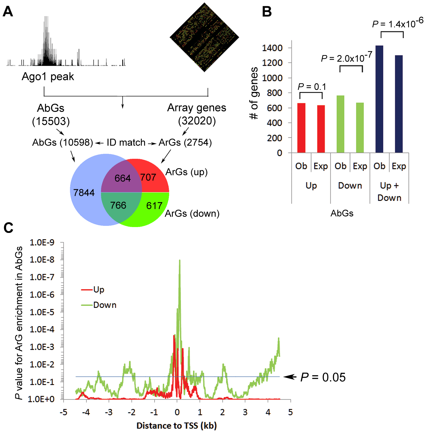 Combined ChIP-seq and microarray analysis reveals that Ago1 depletion affects expression of Ago1-bound genes.