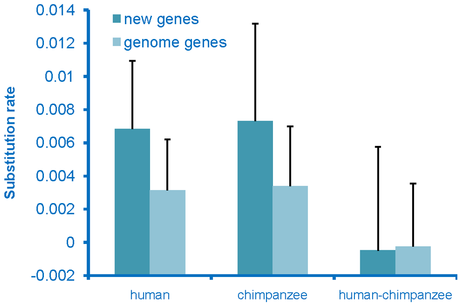 Rate of evolution of de novo originated genes.