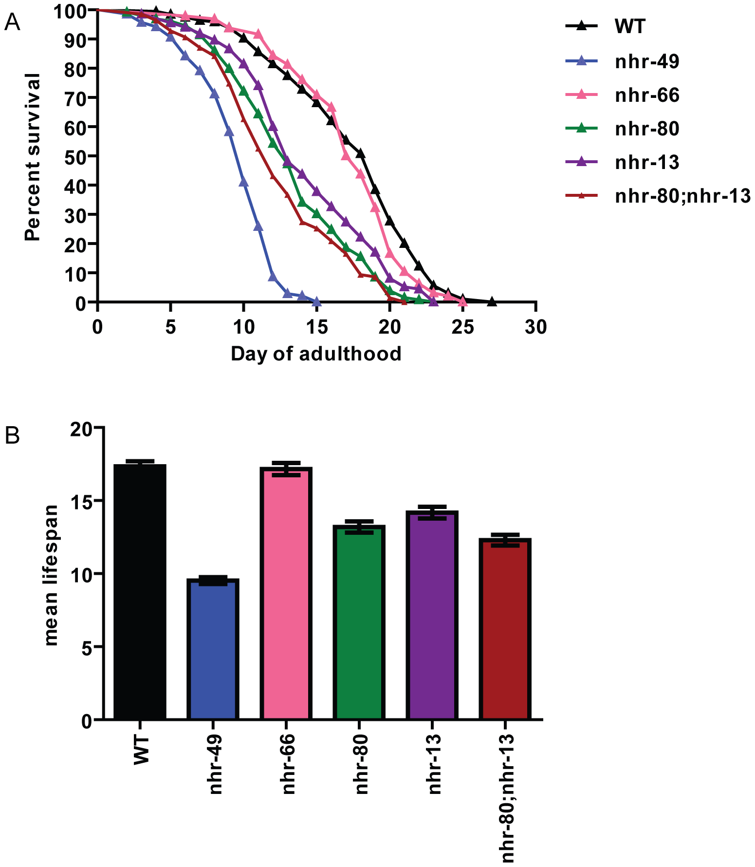 <i>nhr-80; nhr-13</i> double mutants have a reduced lifespan comparable to that of <i>nhr-49</i> animals.