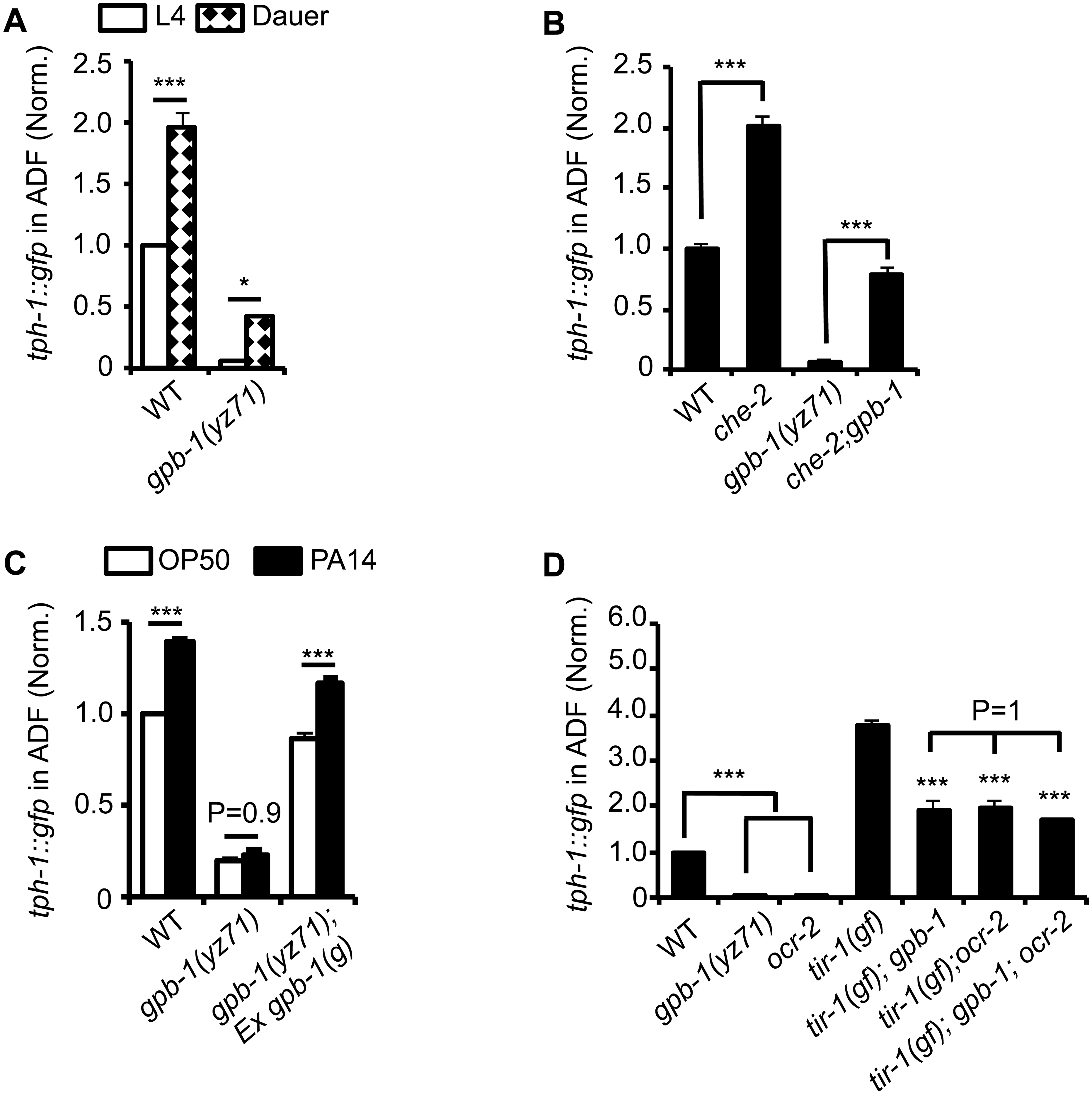 <i>tph-1</i>::<i>gfp</i> expression in <i>gpb-1(yz71)</i> mutants under optimal and aversive conditions.