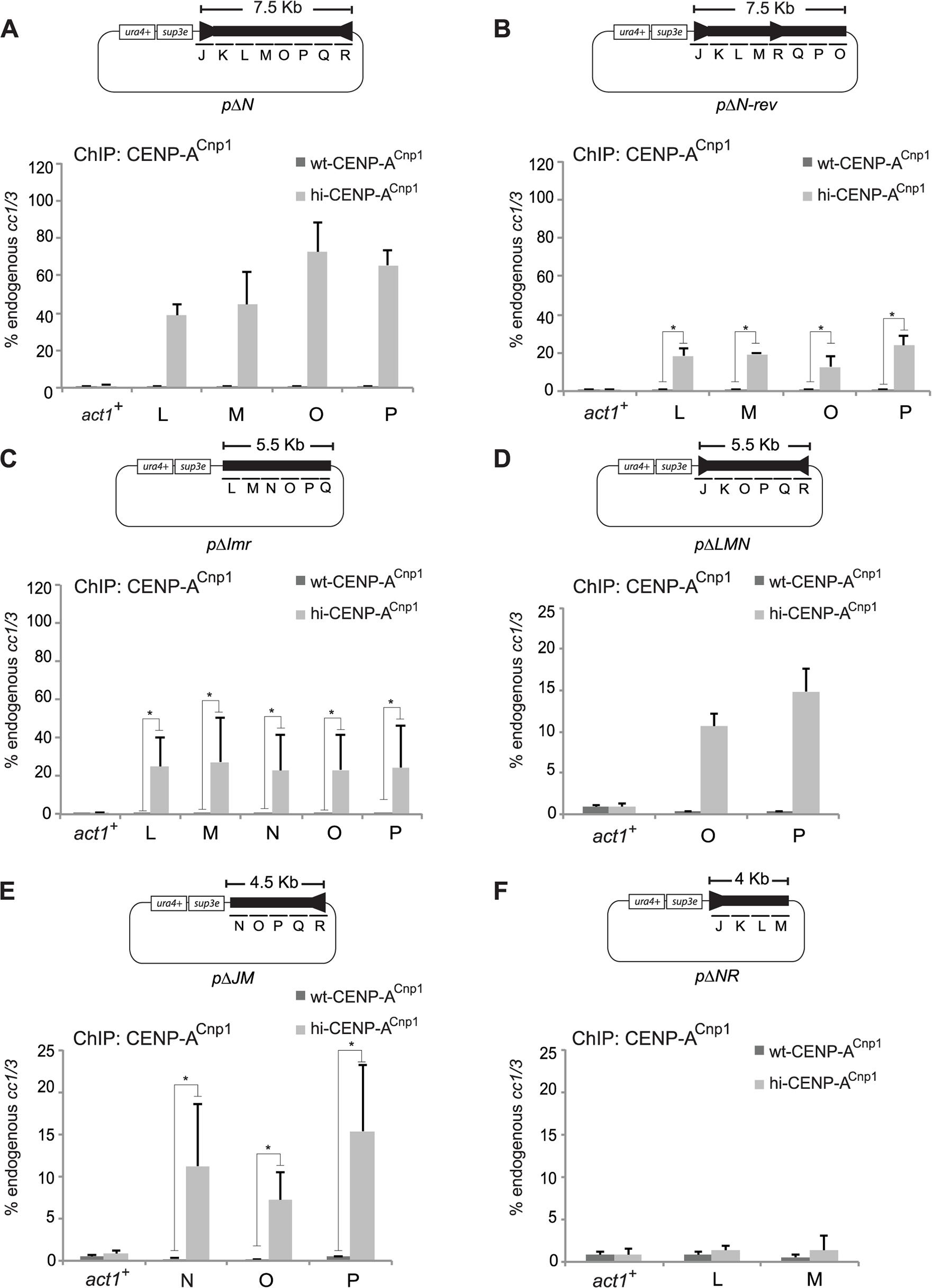 Centromeric DNA sequence affects CENP-A<sup>Cnp1</sup> chromatin establishment.