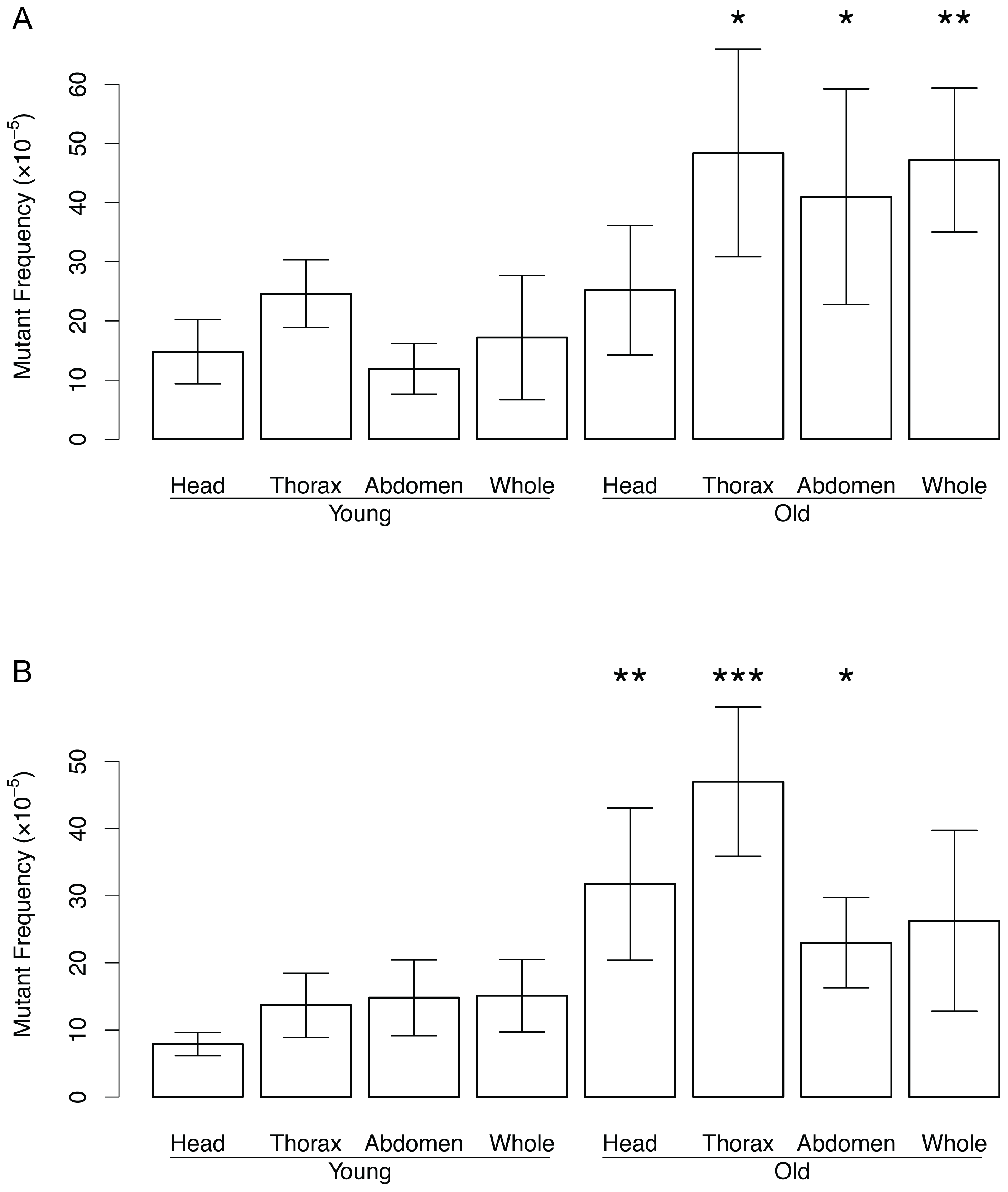 Mutation frequency in DNA from the head, thorax, and abdomen.