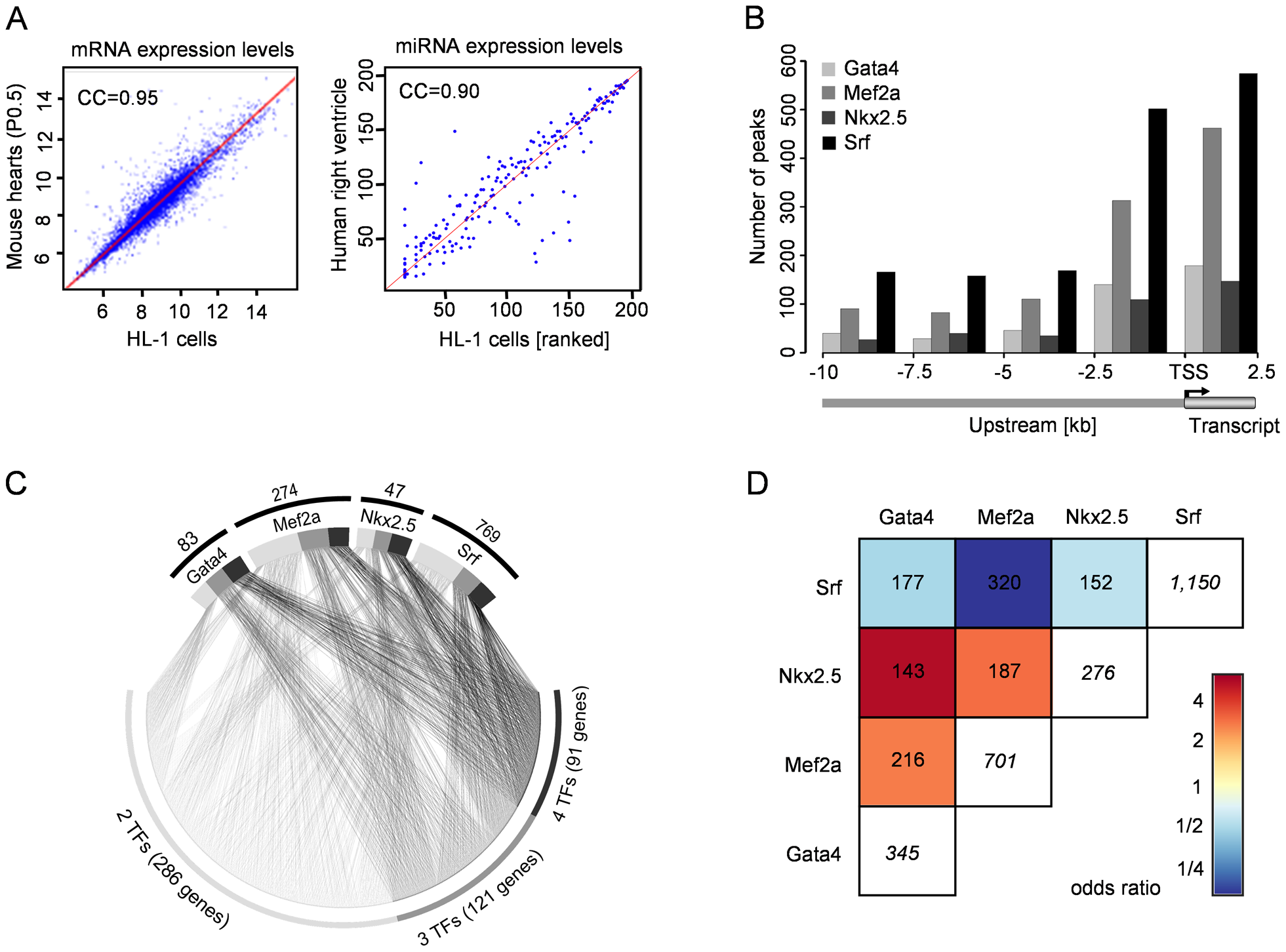 Binding site location and co-occurrence of Gata4, Mef2a, Nkx2.5, and Srf.