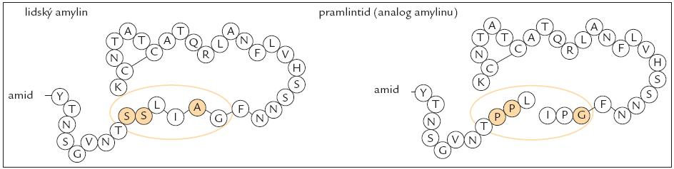 Struktura amylinu a analoga amylinu (pramlintidu) [52].