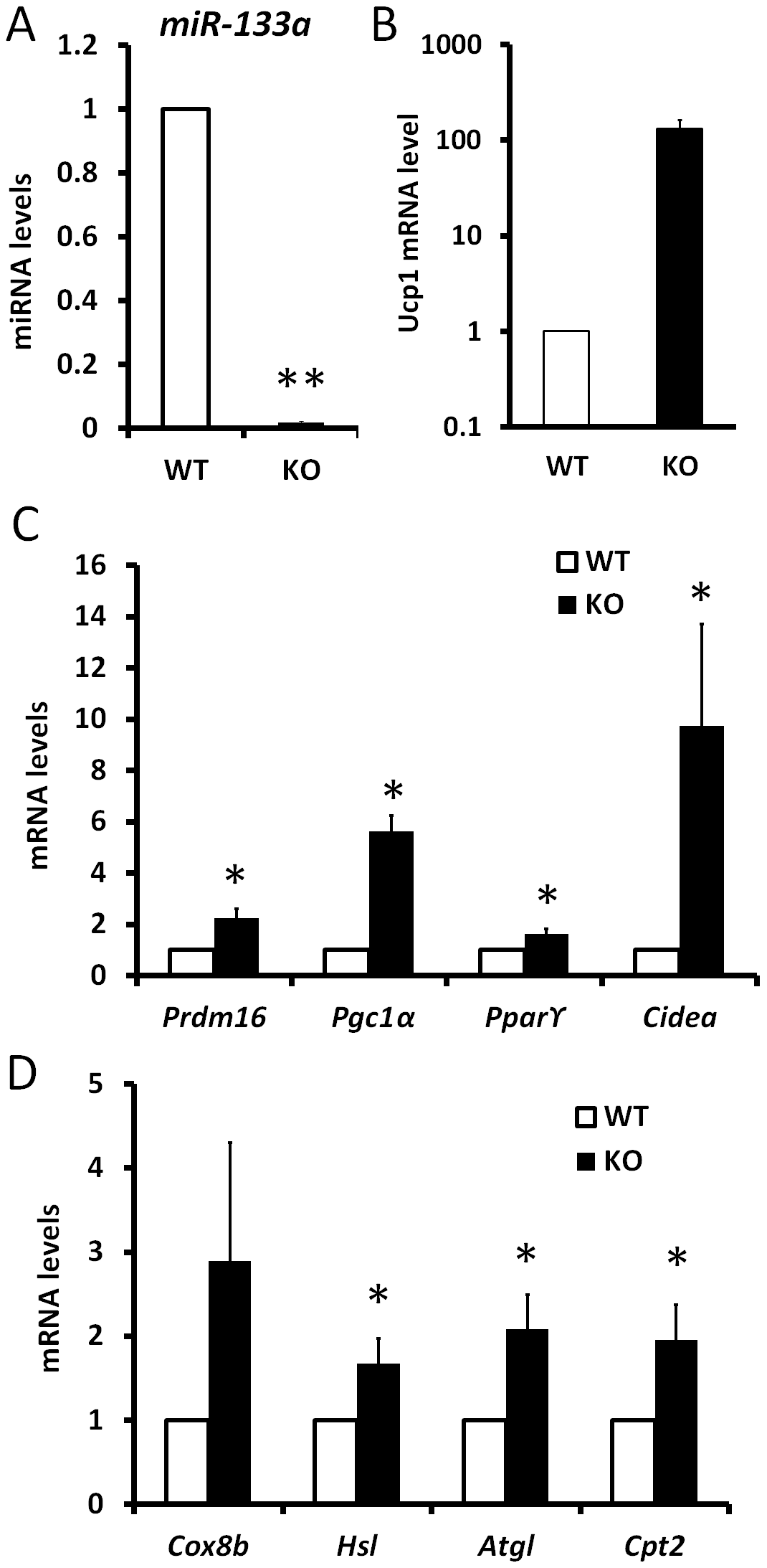 Knockdown of miR-133a promotes the activity of cold-inducible thermogenesis gene program in vivo.