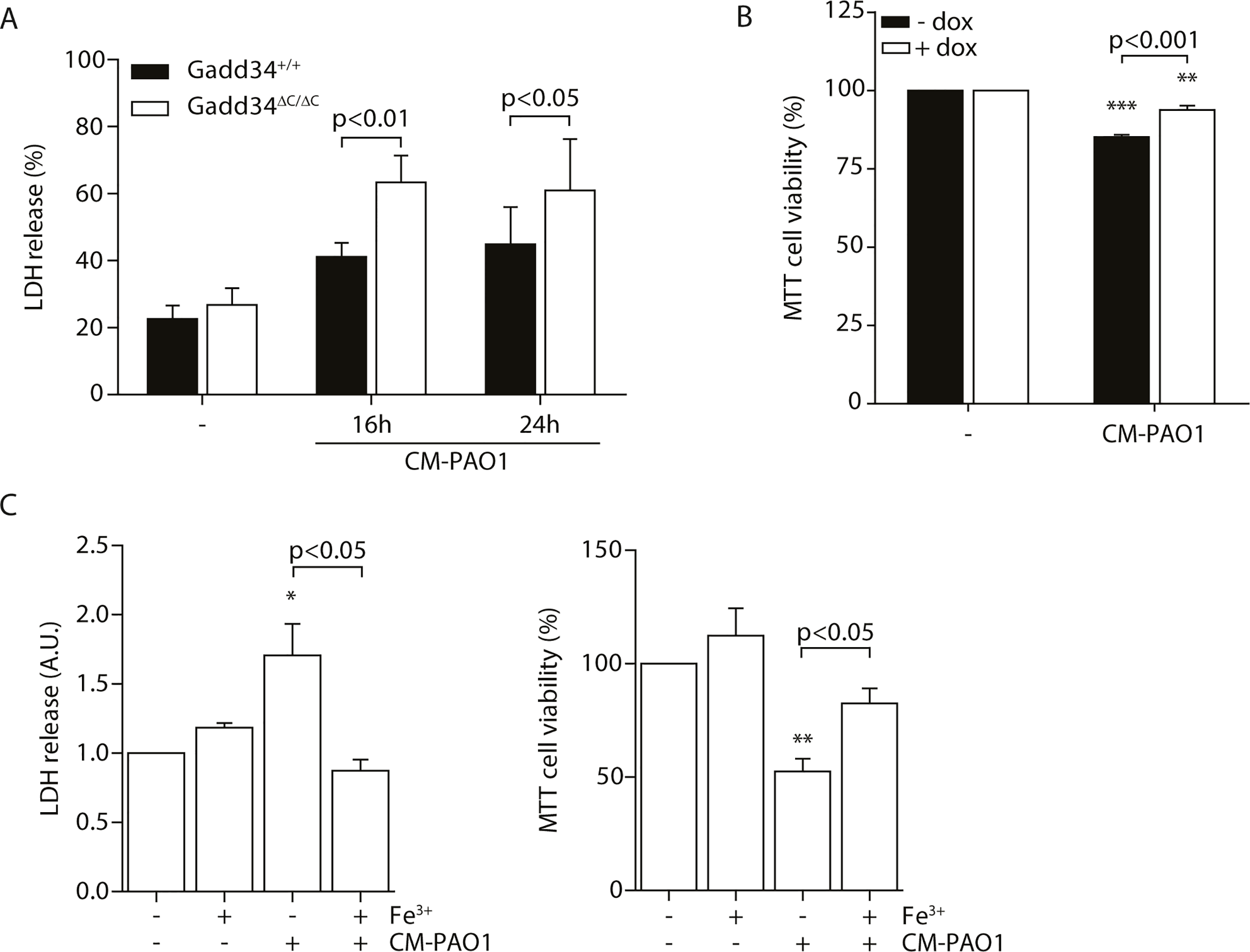 Induction of GADD34 protects against <i>P</i>. <i>aeruginosa</i> mediated cell cytotoxicity.