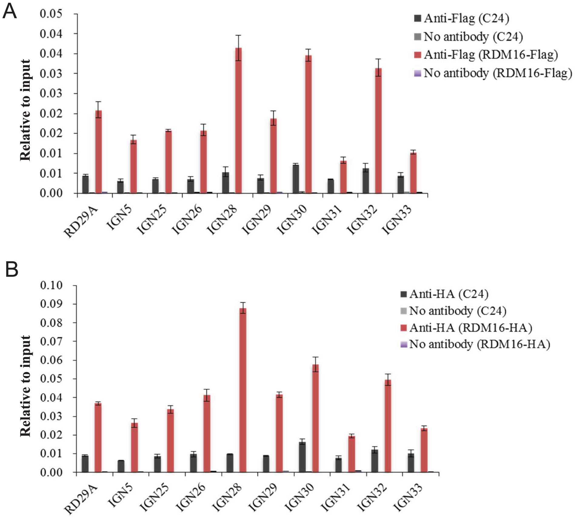 ChIP analysis of RDM16 on Pol V targeted loci.