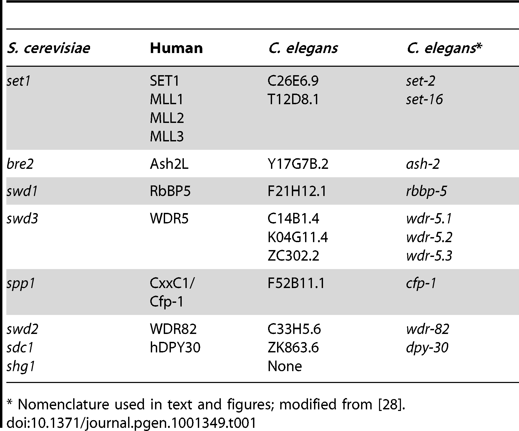 Conserved components of COMPASS complex in <i>C. elegans.</i>