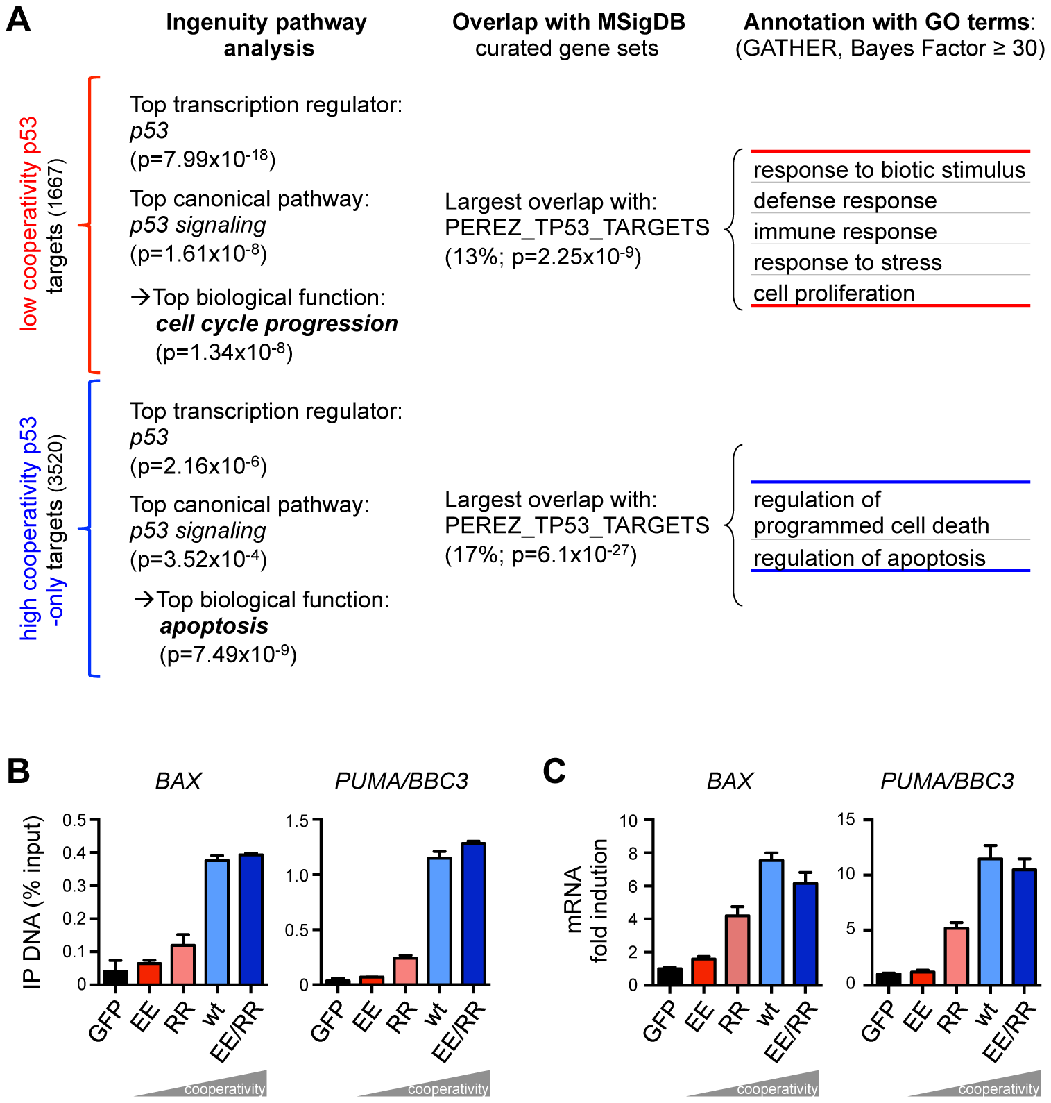 The requirement for DNA binding cooperativity functionally separates the p53 cistrome.