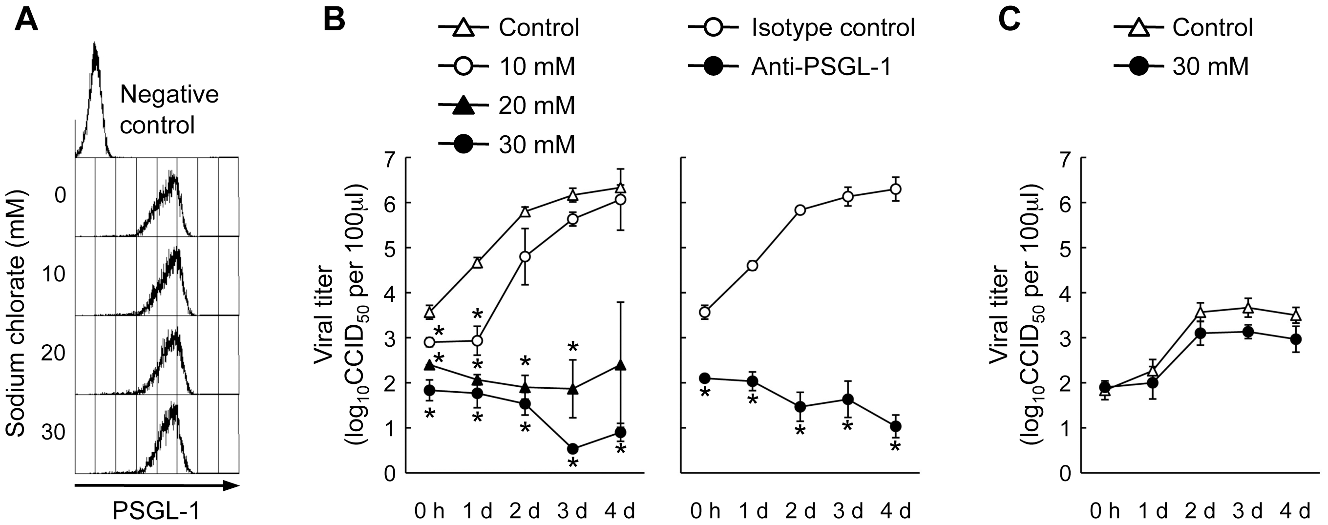 Effect of sodium chlorate on EV71-1095 replication in Jurkat T cells.