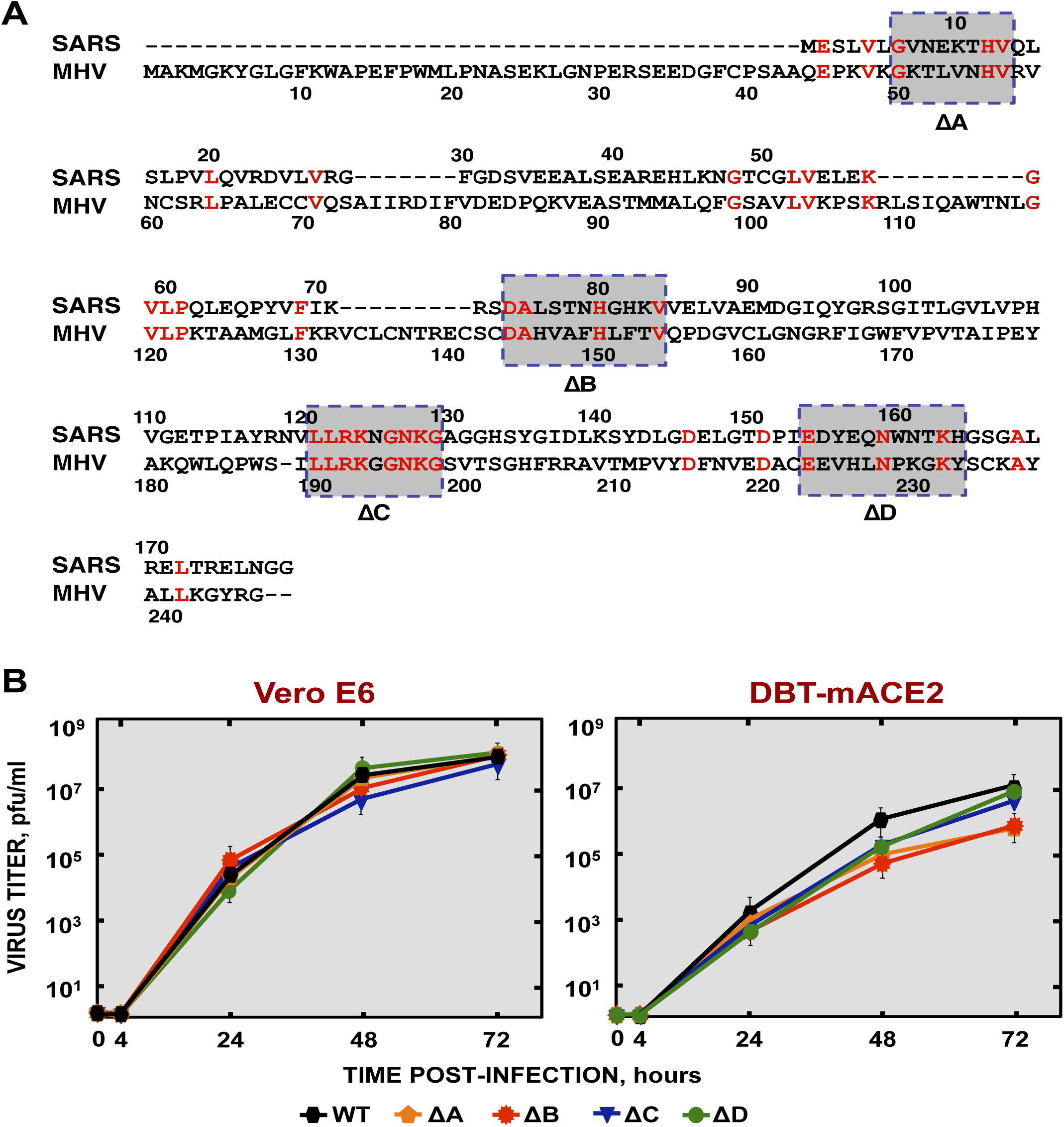 Generation and growth kinetics of SARS-CoVs lacking small regions within the nsp1 protein.