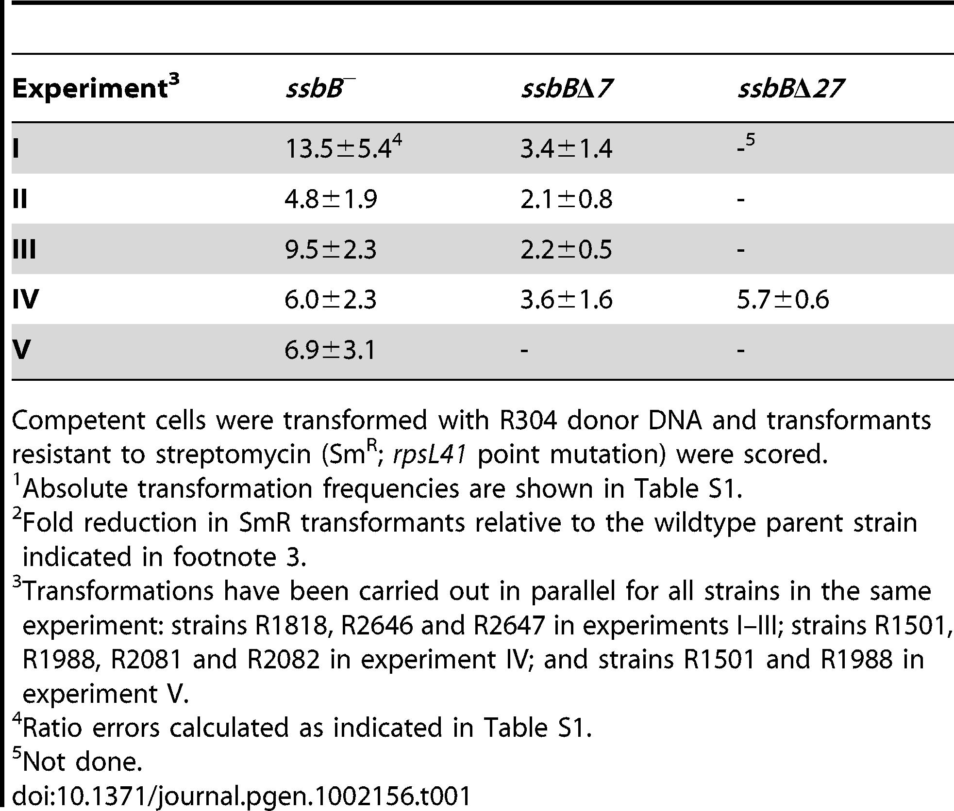 Fold reduction in chromosomal transformation frequency<em class=&quot;ref&quot;>1</em> in <i>ssbB</i><sup>−</sup>, <i>ssbB</i>Δ<i>7</i>, and <i>ssbB</i>Δ<i>27</i> cells<em class=&quot;ref&quot;>2</em>.