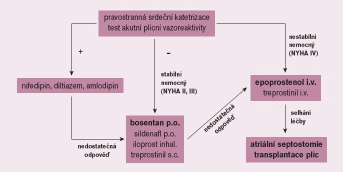 Terapeutický algoritmus u plicní arteriální hypertenze.