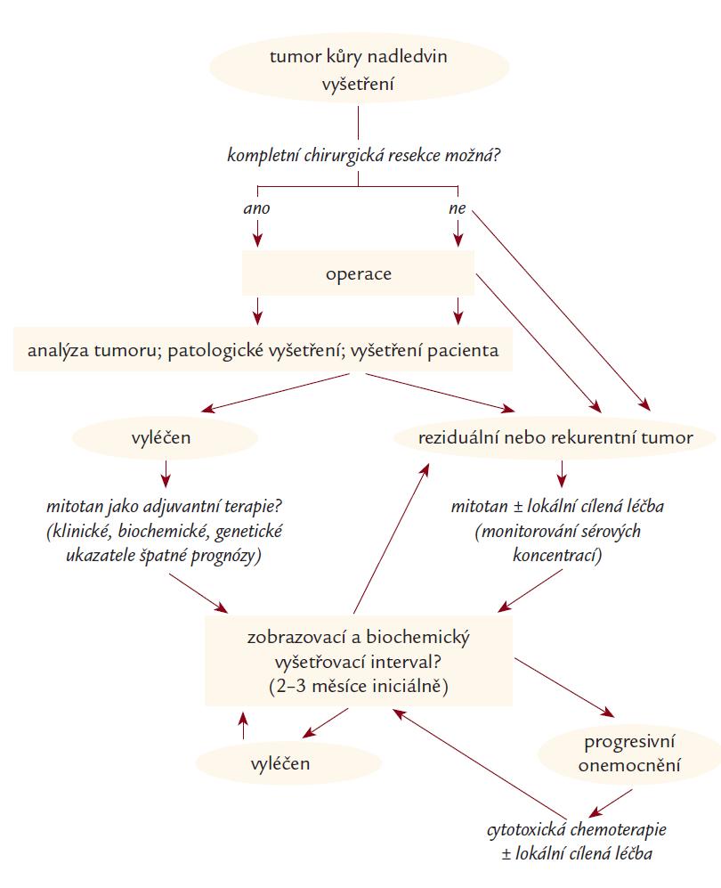 Algoritmus diagnostiky a terapie pacientů s karcinomem kůry nadledvin. Upraveno podle [62].