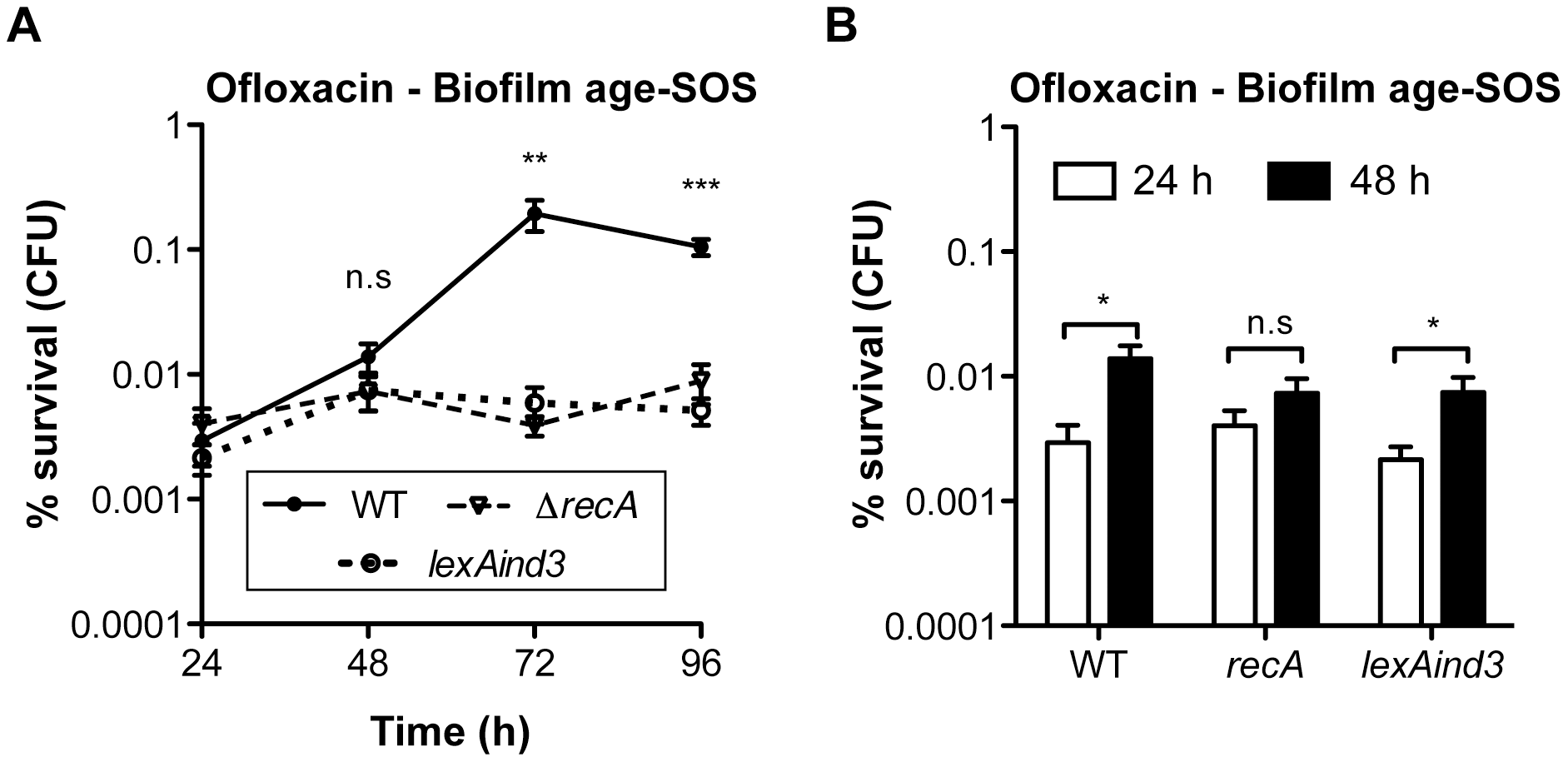 Ofloxacin tolerance in aging biofilms is SOS-response-dependent.
