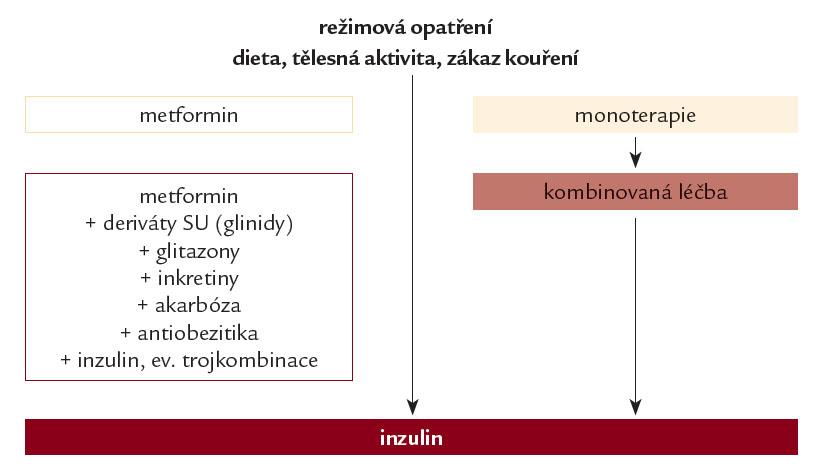 Algoritmus léčby hyperglykemi e u nemocných s di abetem 2. typu. Léčbu revidujeme a intenzifi kujeme obvykle při HbA<sub>1c</sub> ≥ 5,3 %.