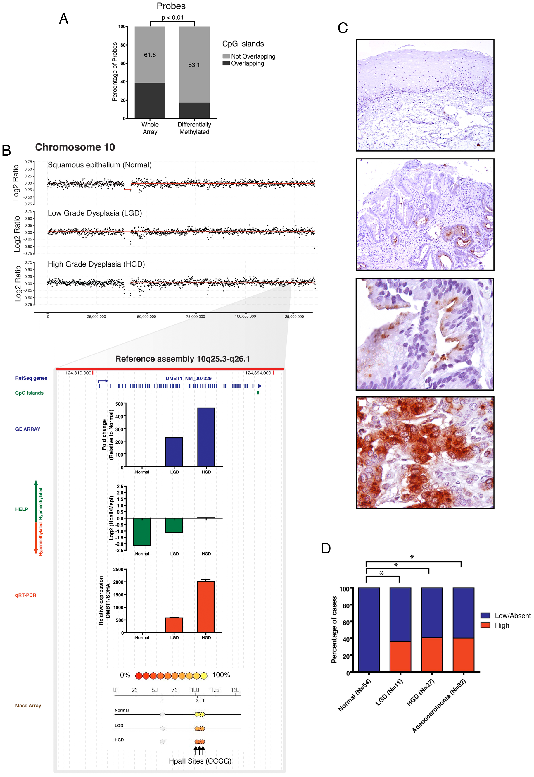 <i>DMBT1</i> upregulation by non-CpG island methylation changes.