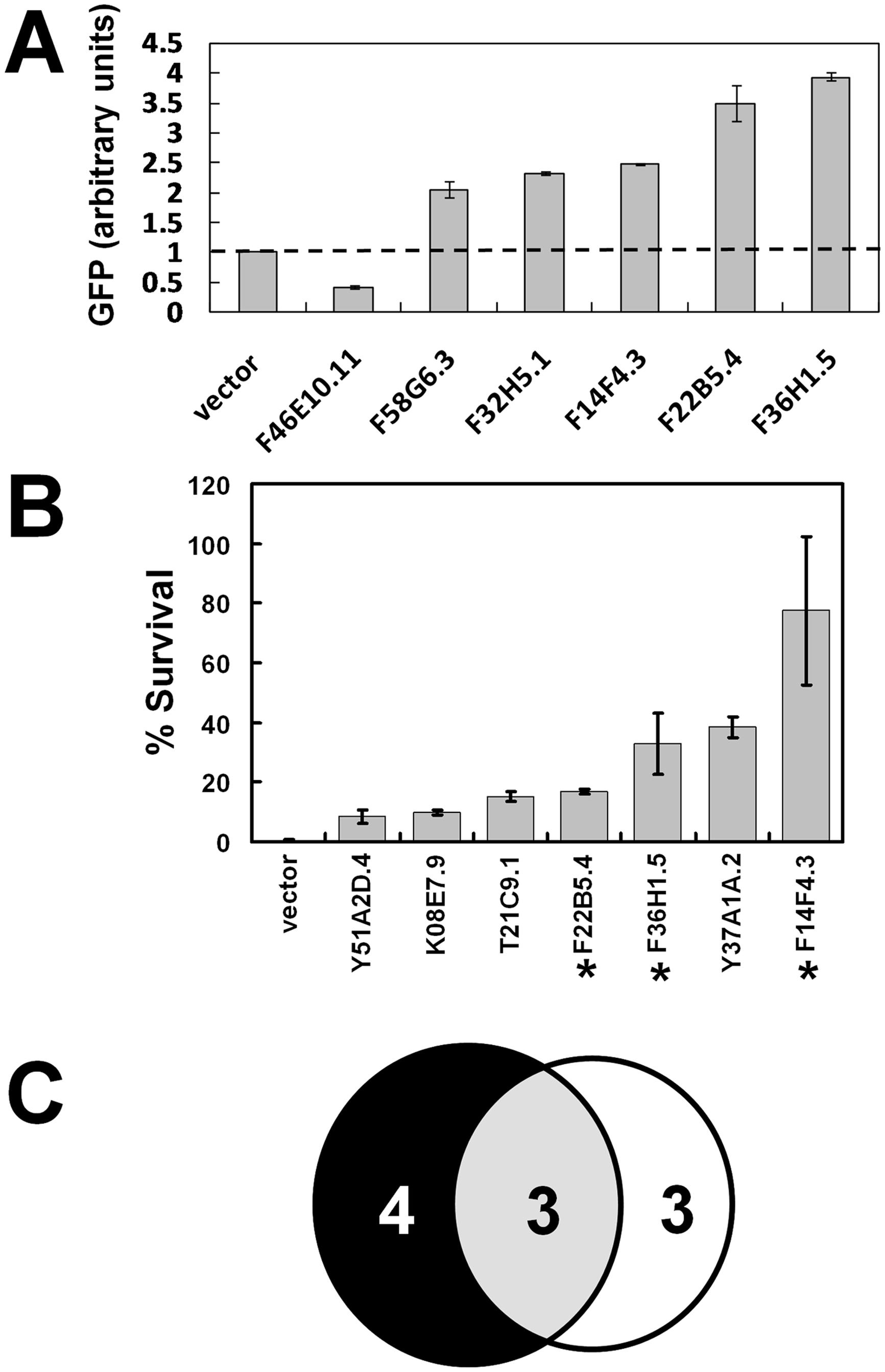 Functional validation of heme-responsive genes.
