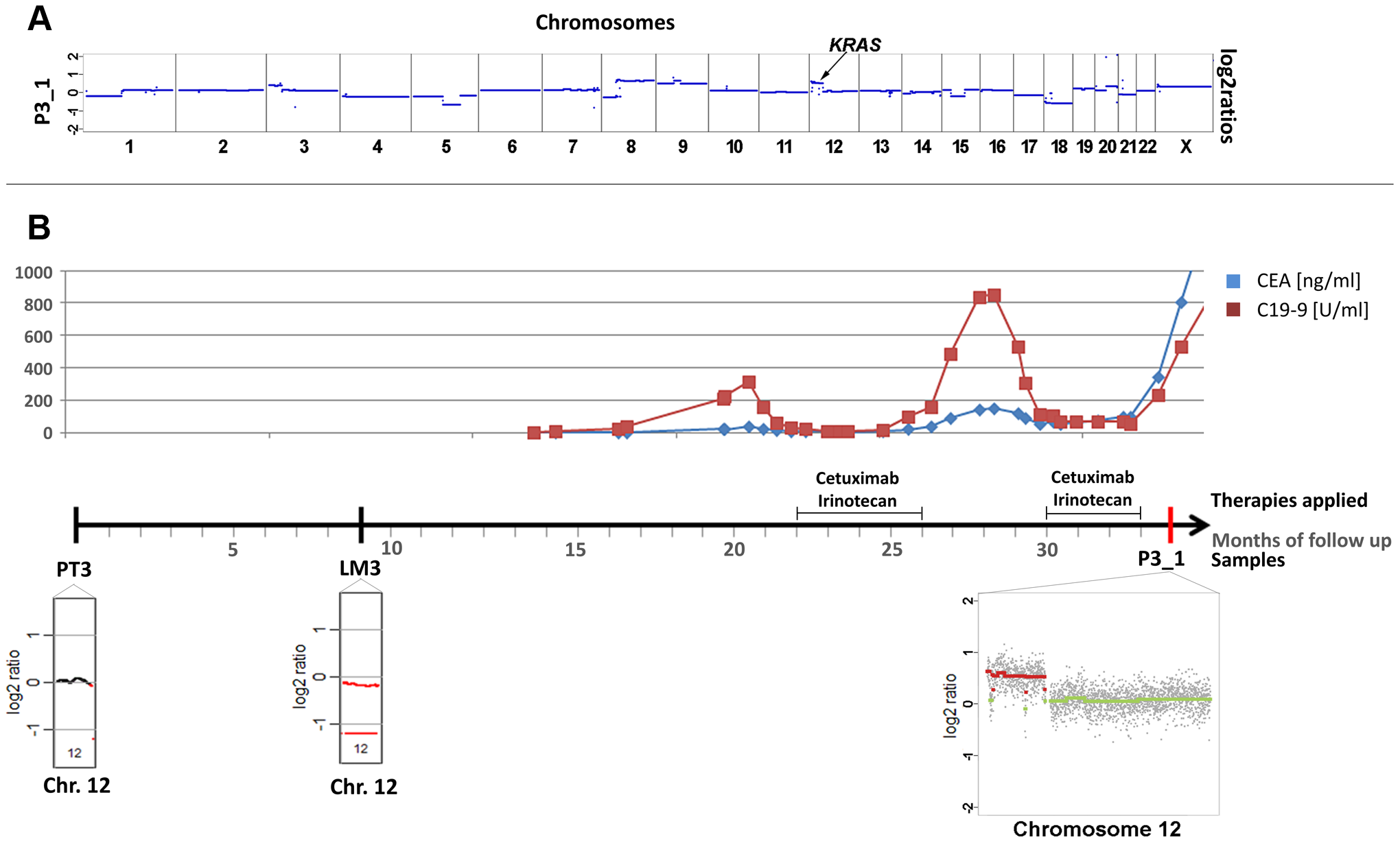 Occurrence of a chromosomal 12p polysomy under cetuximab therapy in patient #26C1.