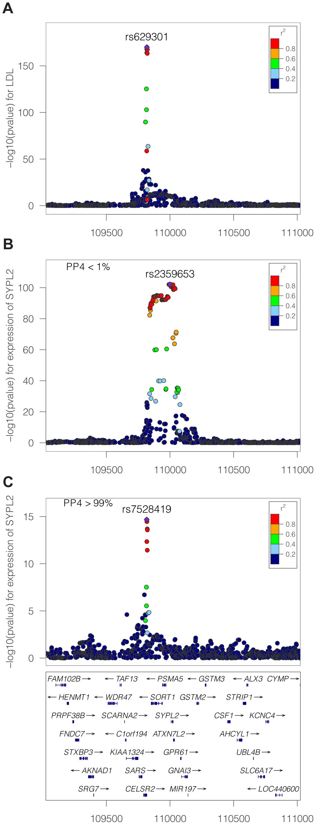 LDL association and eQTL association plots at the <i>SYPL2</i> locus.