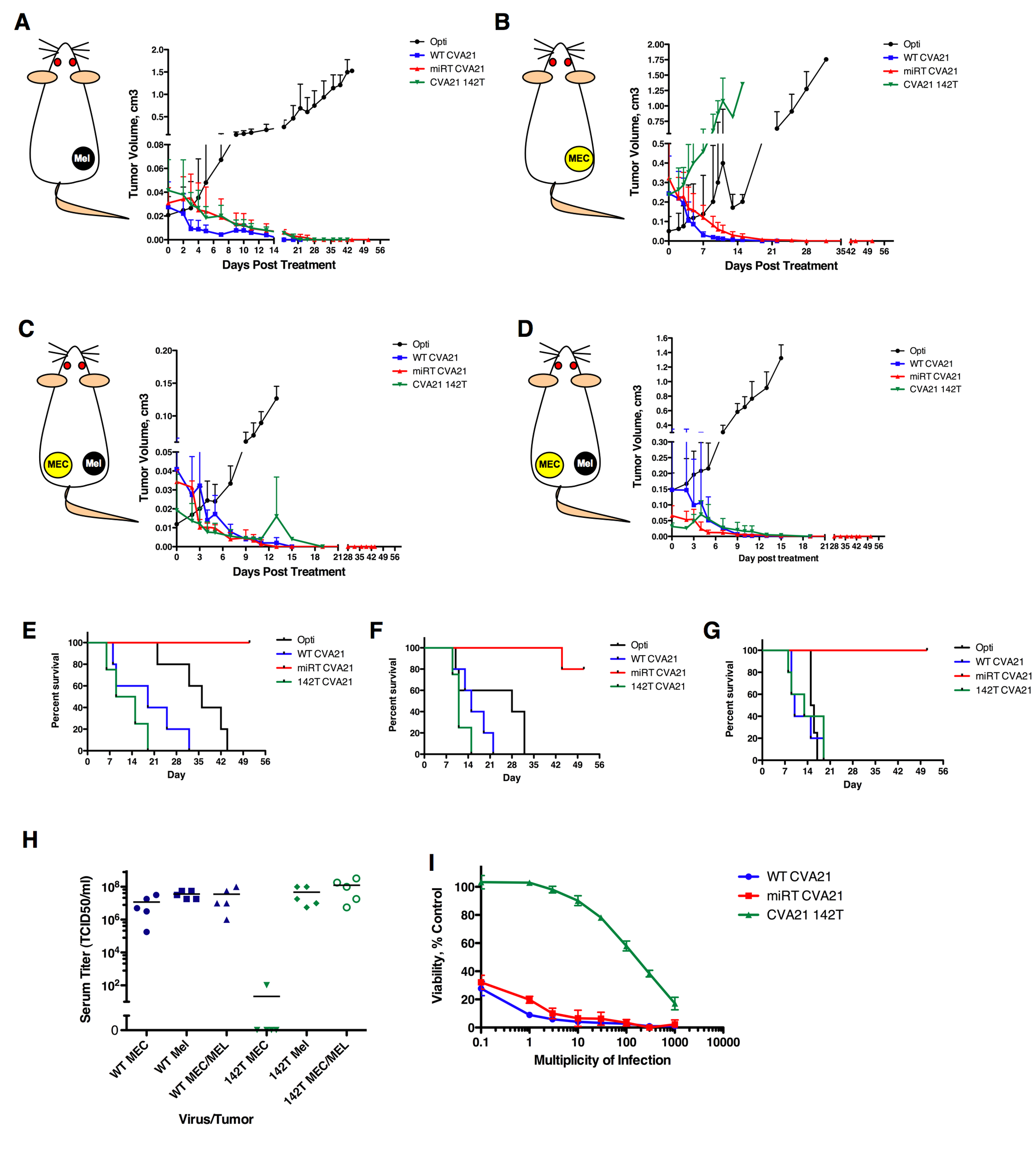 MicroRNAs regulate virus tropism in vivo, but can be saturated by high-level viremia.
