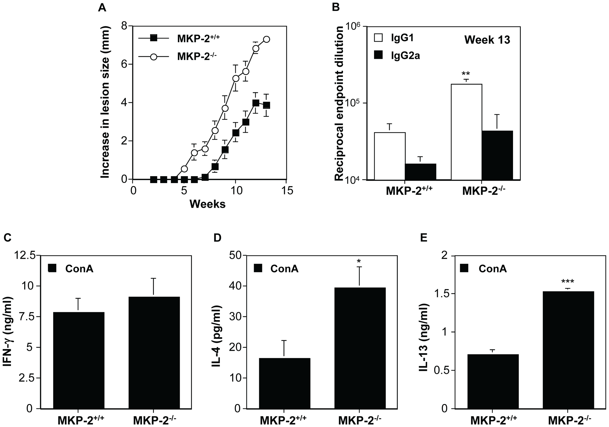 MKP-2 deficiency results in increased susceptibility and an enhanced Th2 response following infection in the rump with <i>L. mexicana</i>.