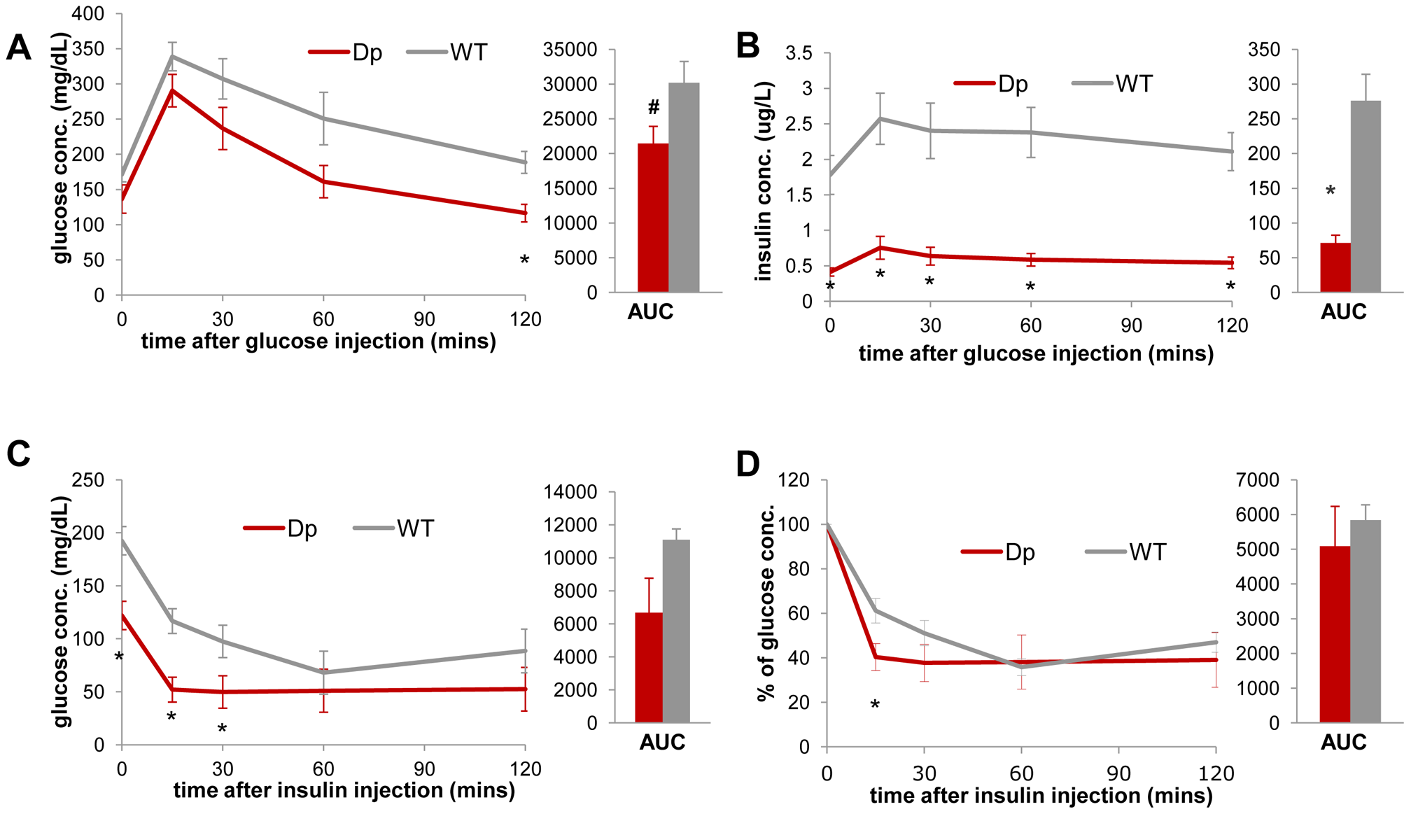 <i>Dp(11)17/+</i> mice (red) display improved insulin sensitivity compared to WT mice (gray).