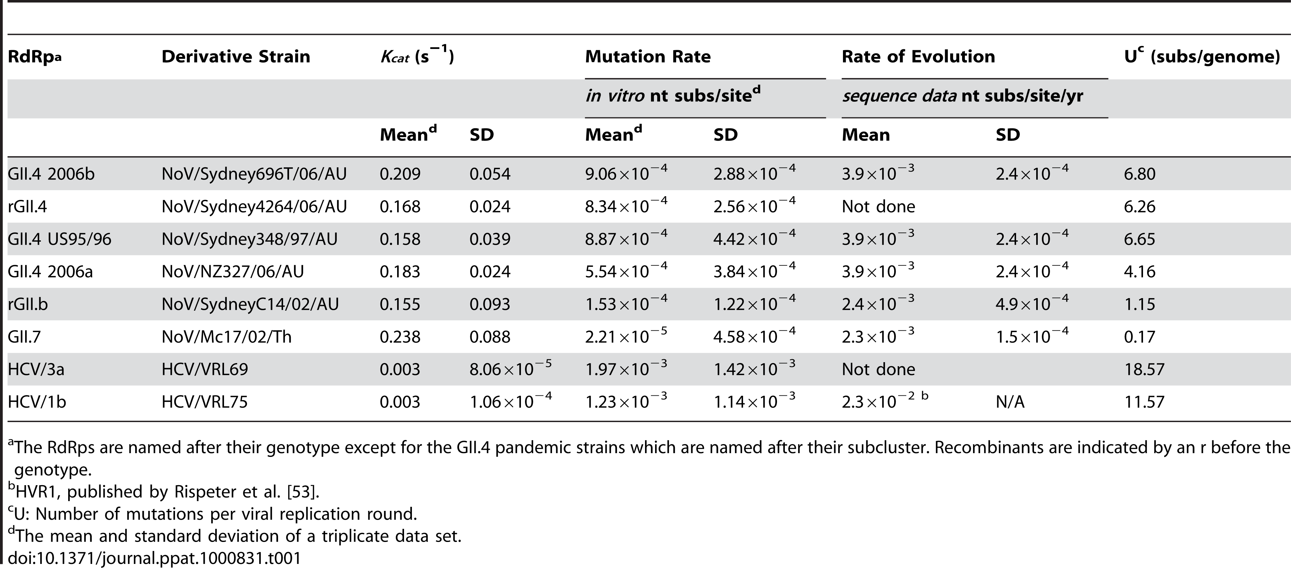 Comparison of the replication accuracy and rate for NoV and HCV RdRps.