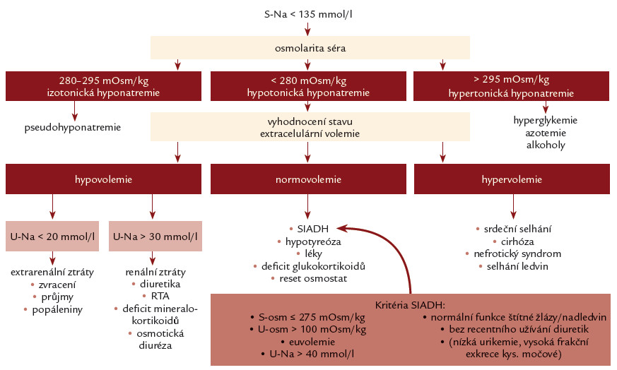Schéma 1. Diagnostický algoritmus hyponatremie [1,9].