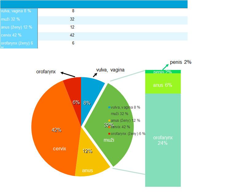 Procentuální zastoupení karcinomů asociovaných s HPV 16 a 18 v USA (16)