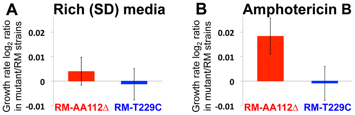 Fitness effect of the causal mutation.