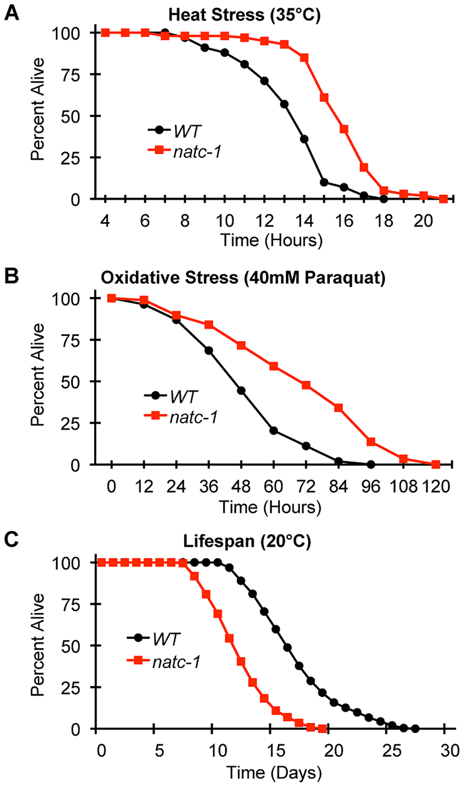 <i>natc-1</i> mutations increase resistance to heat and oxidative stress.