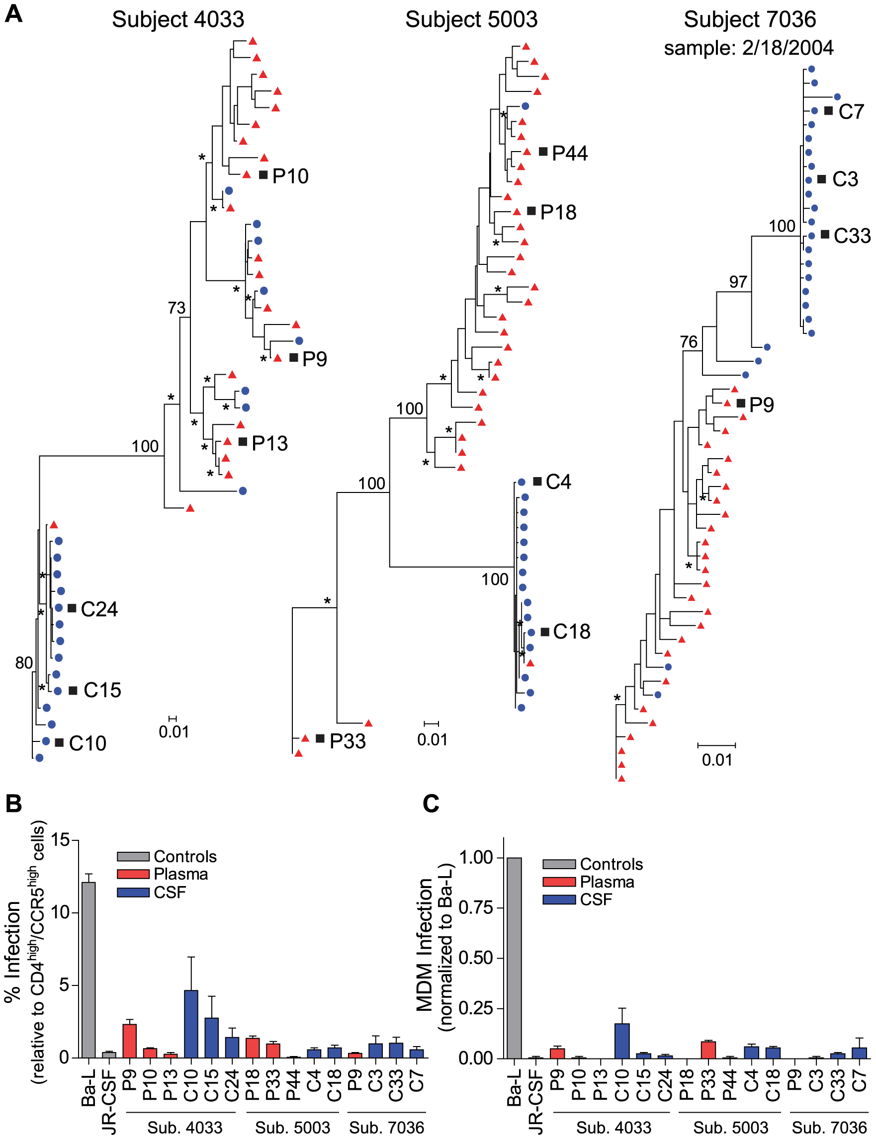 Compartmentalized R5 T cell-tropic HIV-1 populations are found in the CSF of subjects diagnosed with HAD.