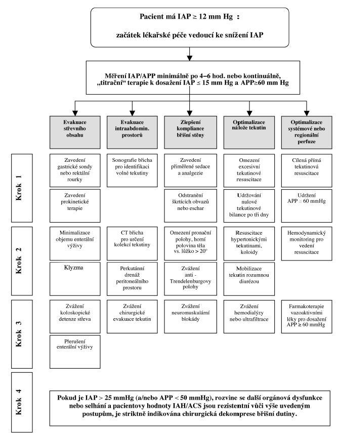 Doporučený algoritmus medicínského řešení IAH / ACS Fig. 1: Recommended IAH / ACS medical management algorithm