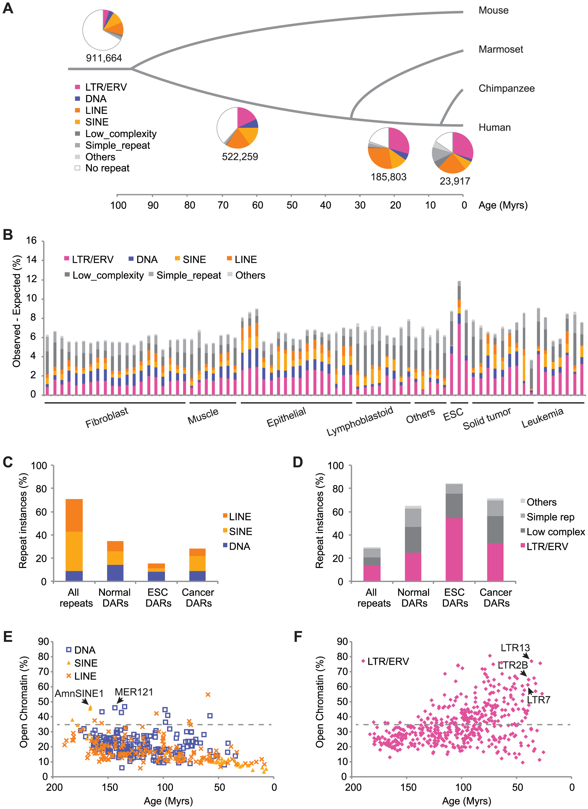 TEs have contributed a large fraction of accessible regions in human cells.