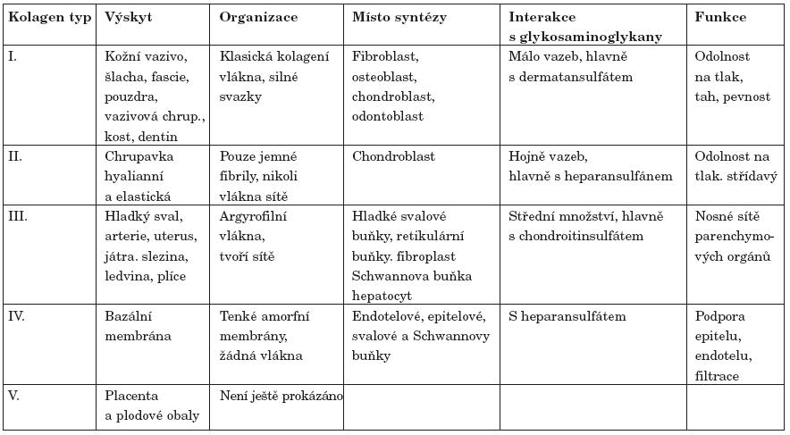 Typy kolagenu se zhodnocením lokalizace, zdrojů a funkční role v lidském organismu (upraveno podle 13).